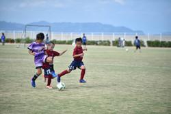 mini_soccer (267)