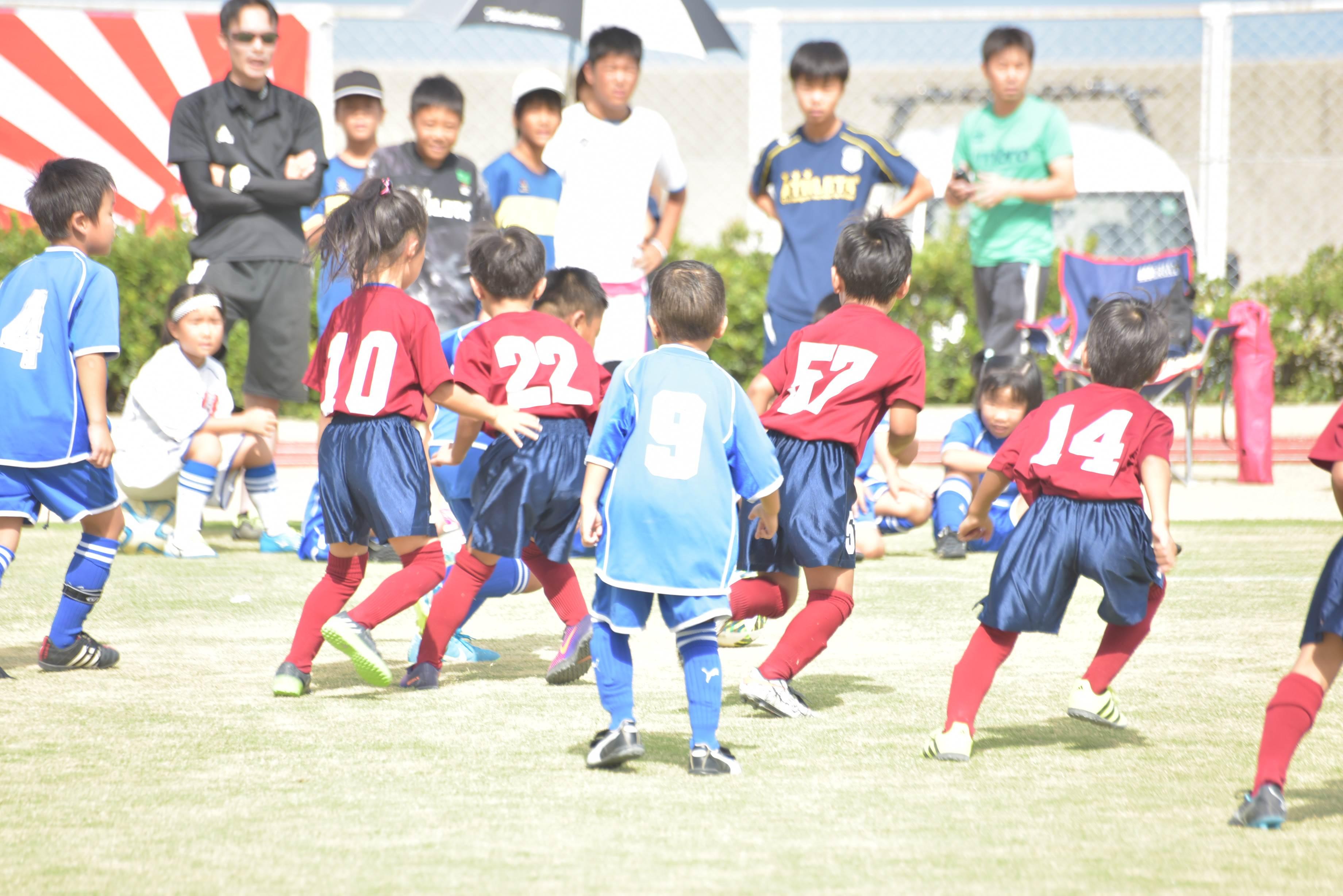 mini_soccer (540)