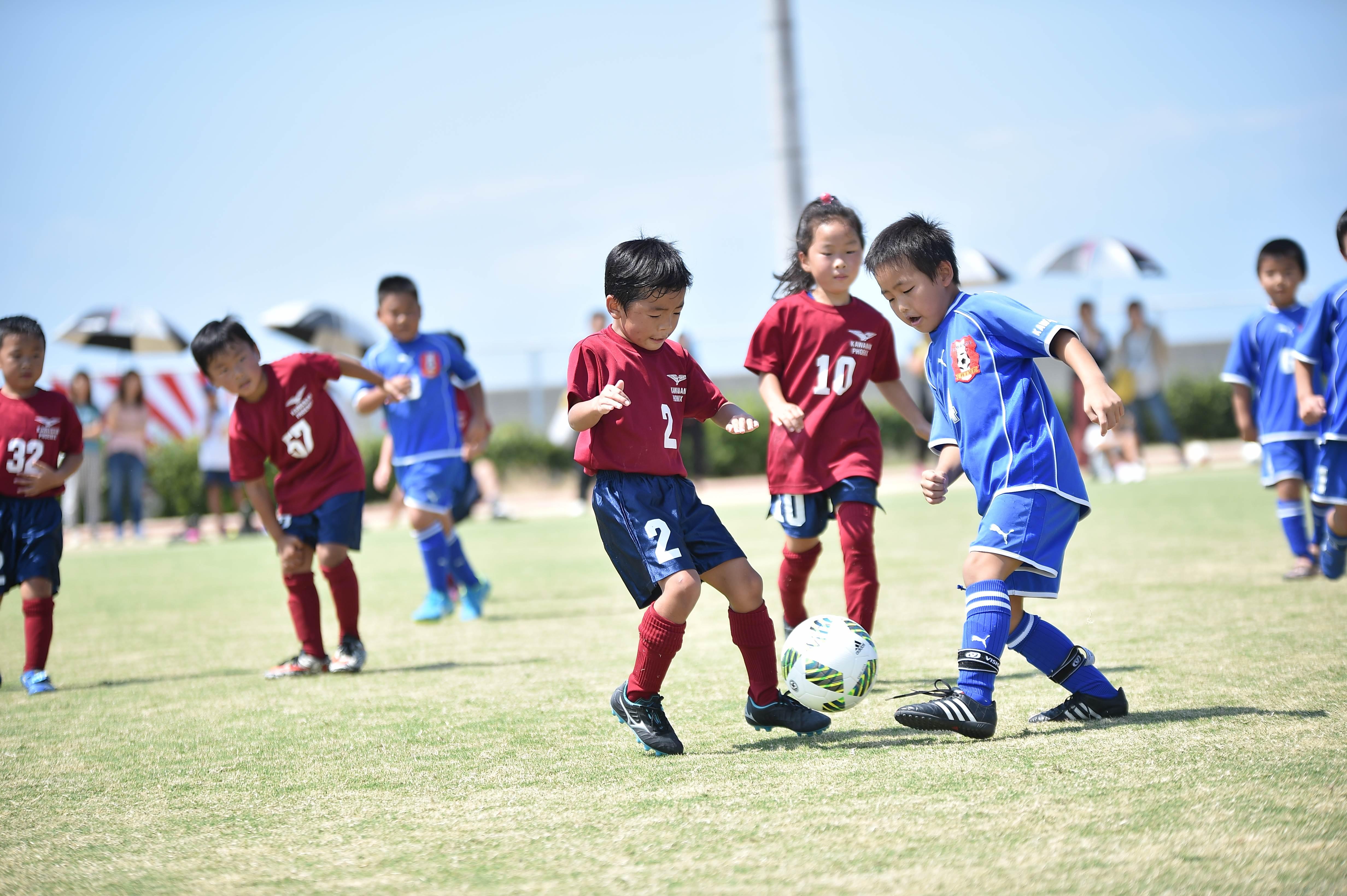 mini_soccer (519)