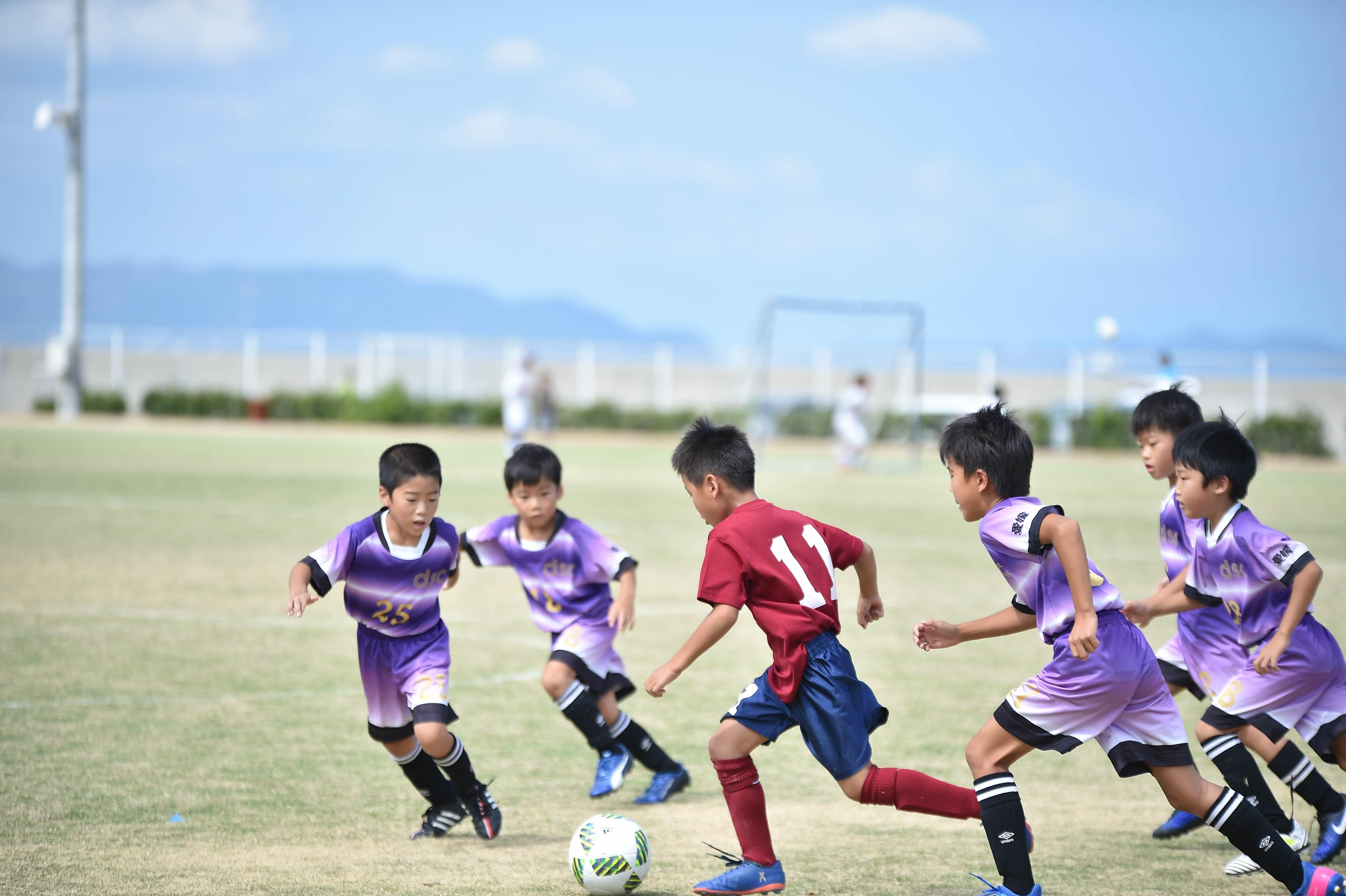mini_soccer (226)