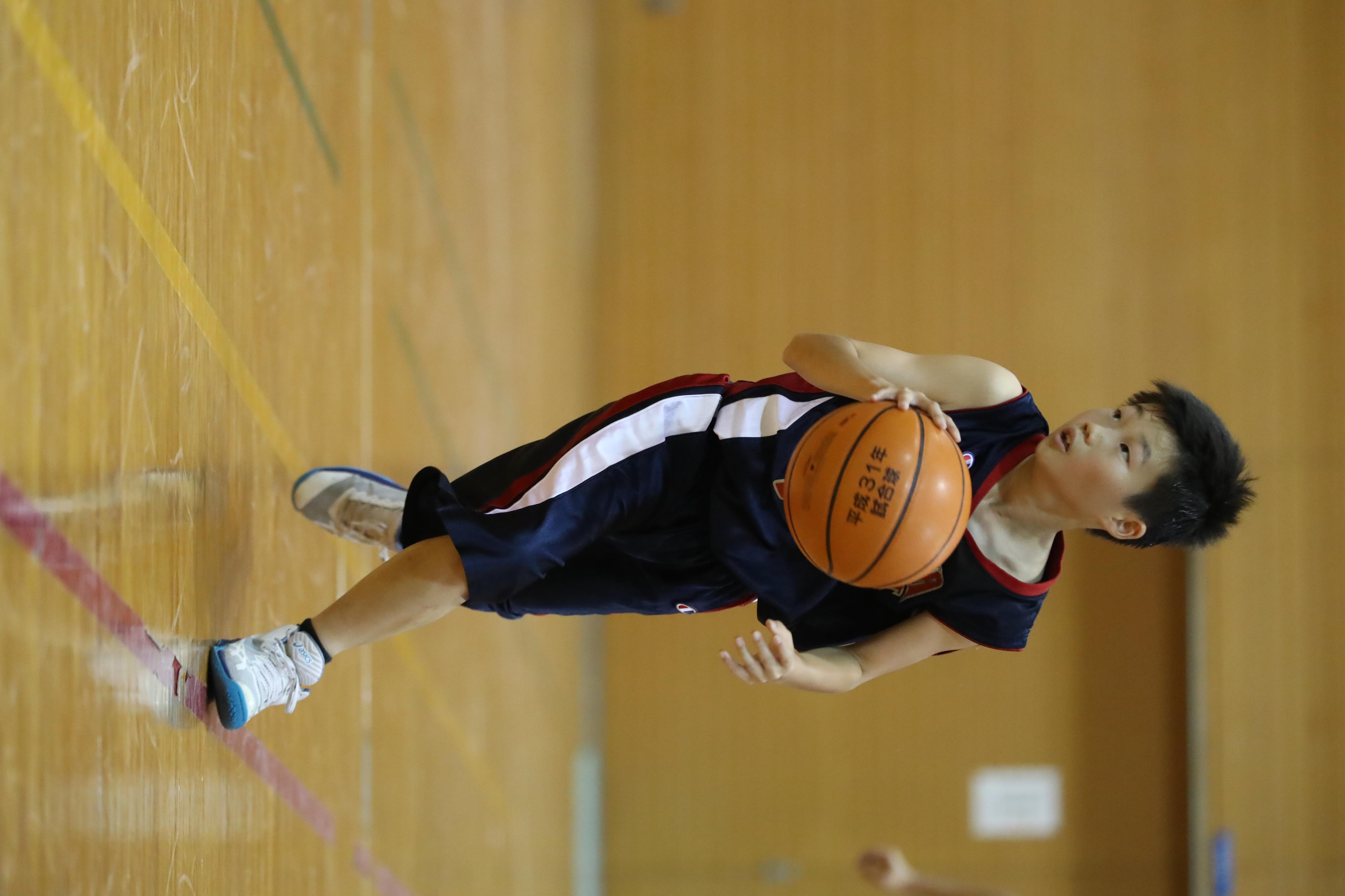 バスケット (300)