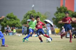 mini_soccer (403)