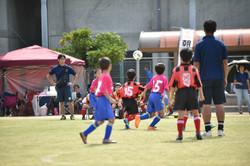 mini_soccer (174)