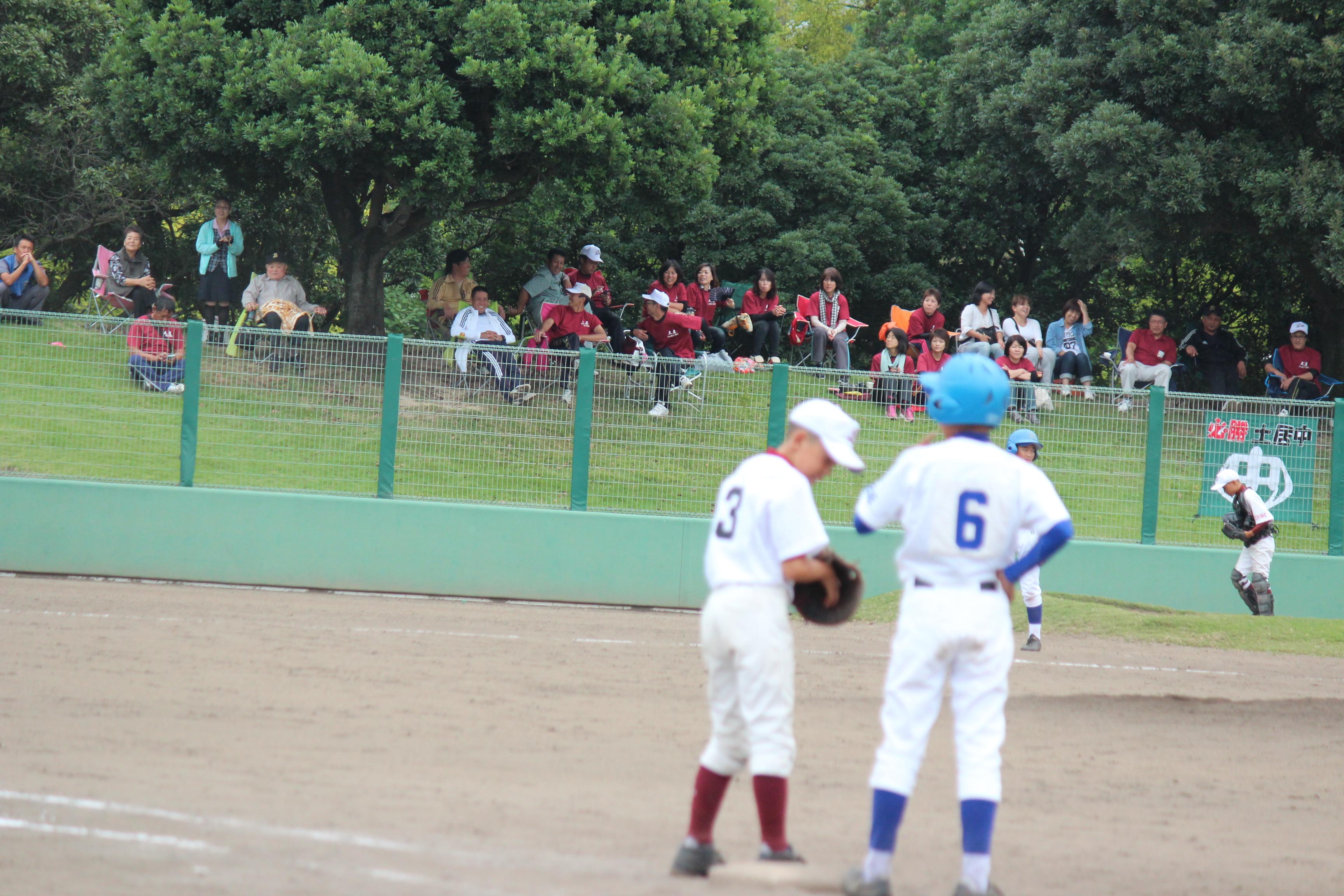 野球 (317)