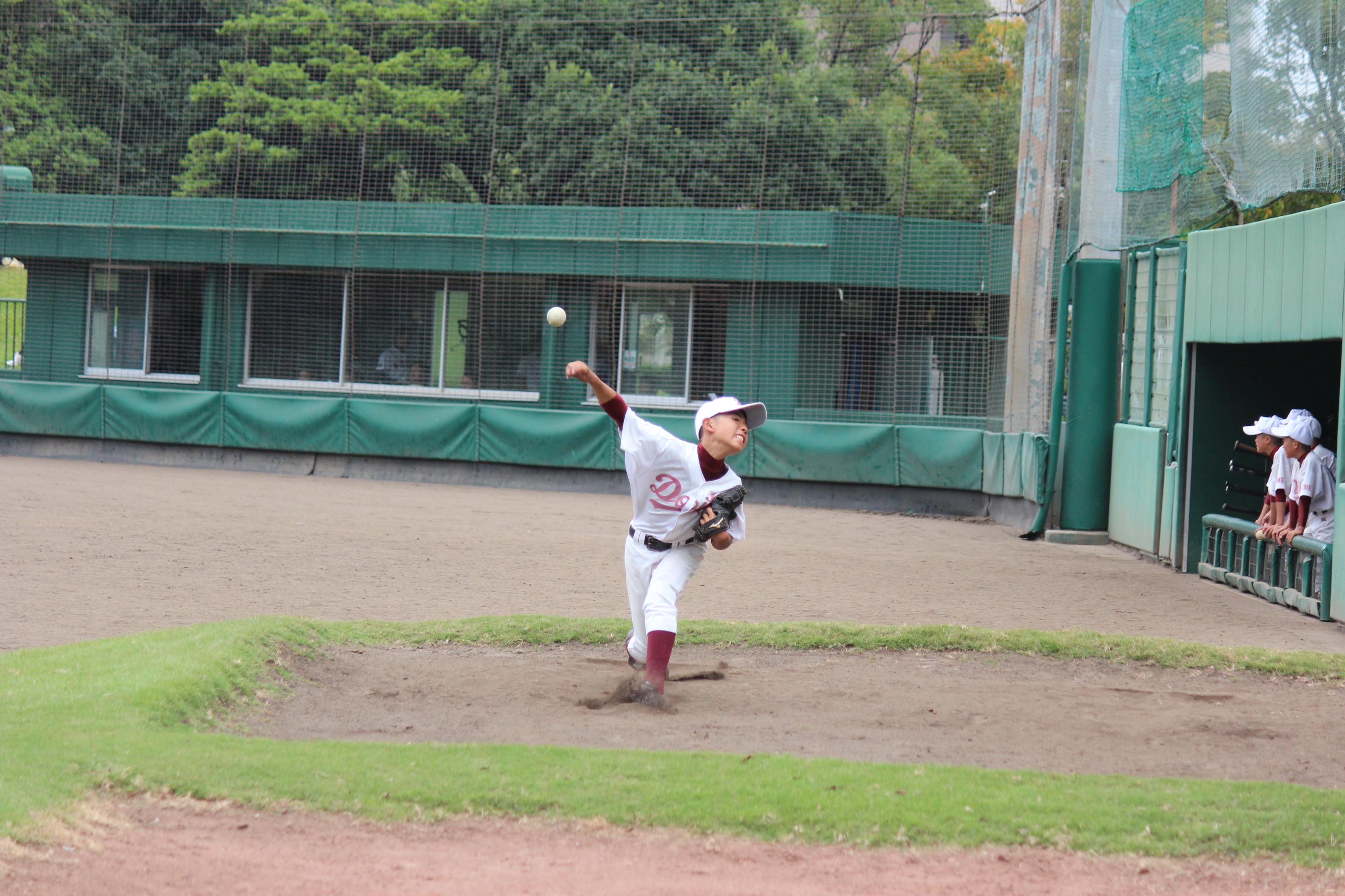 野球 (217)