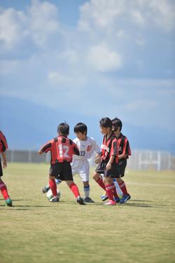 mini_soccer (374)