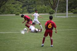 サッカー (1193)