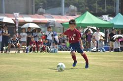 mini_soccer (664)