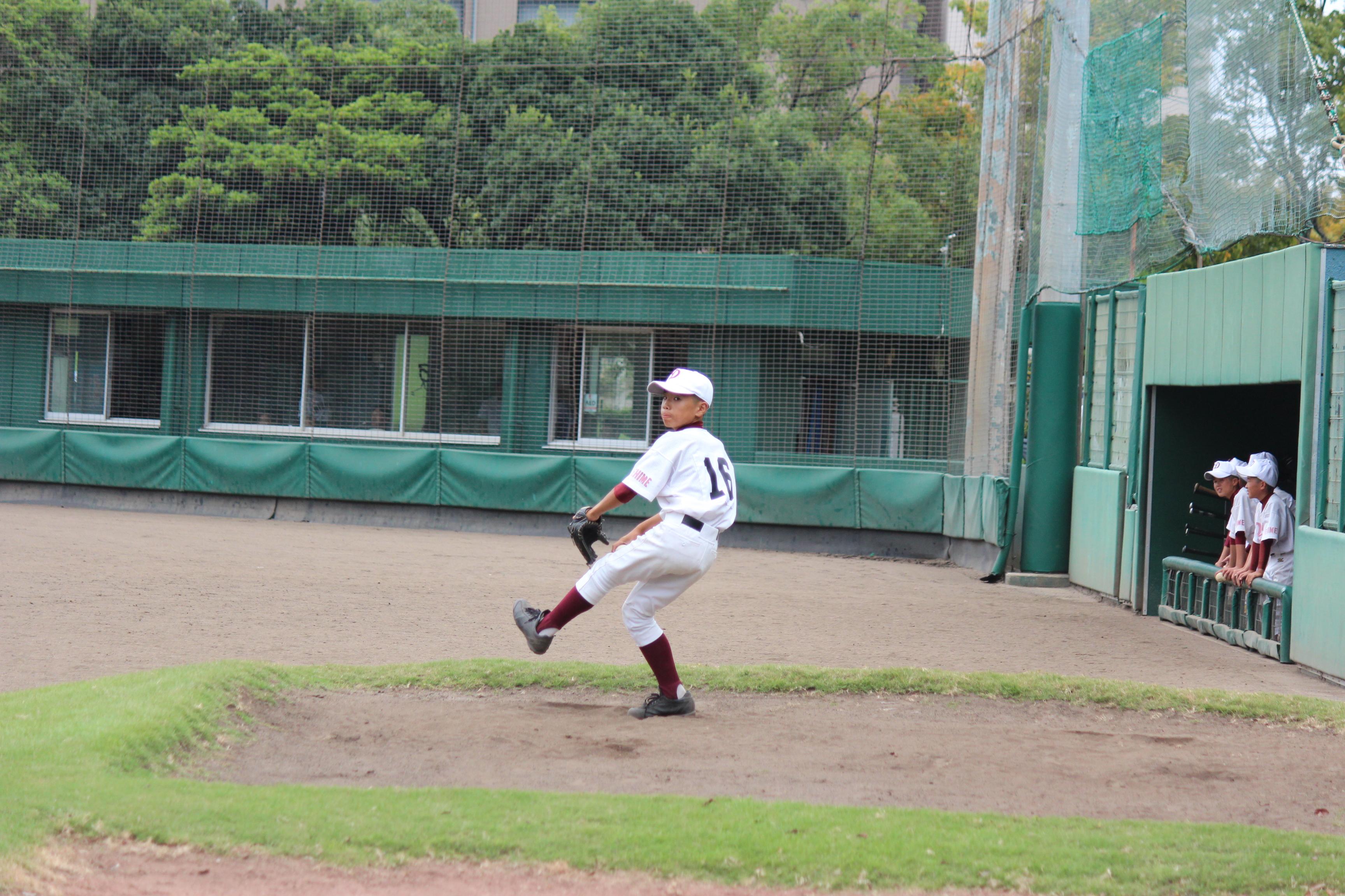 野球 (215)