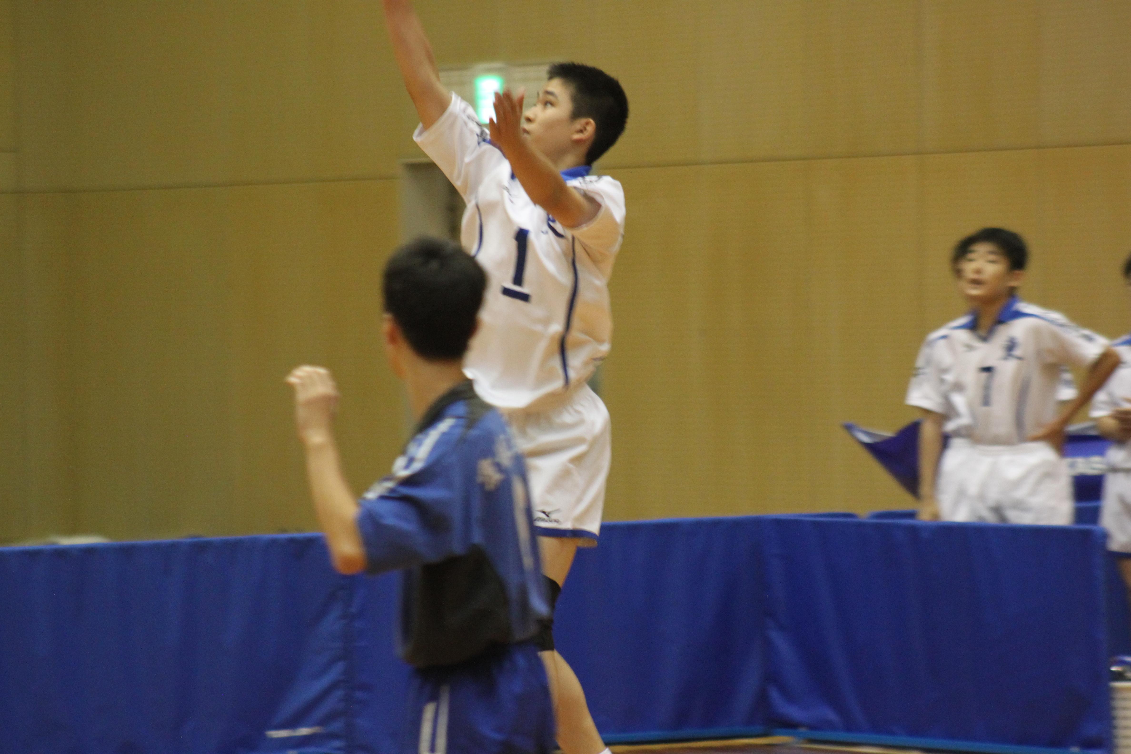 バレーボール (15)
