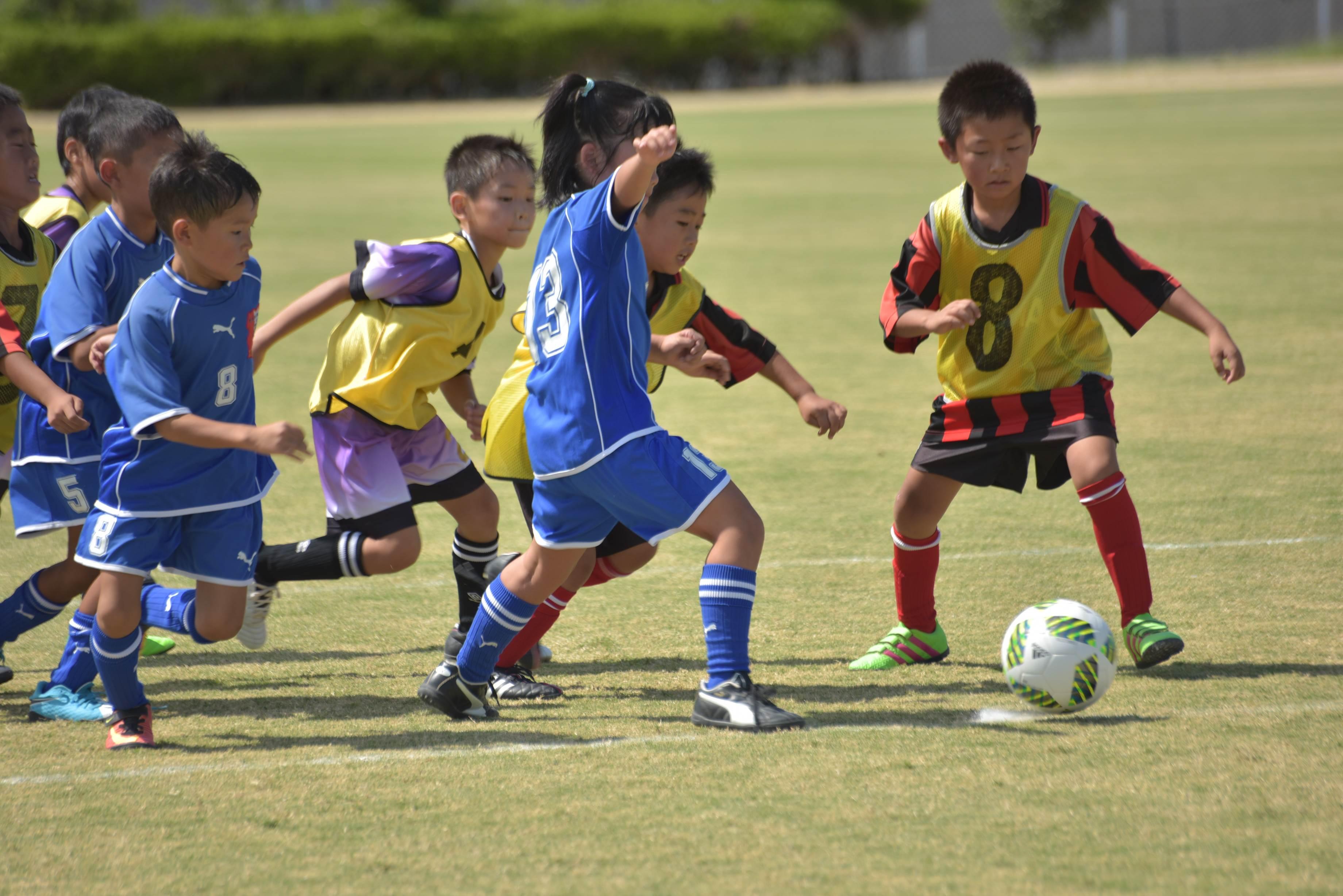 mini_soccer (638)
