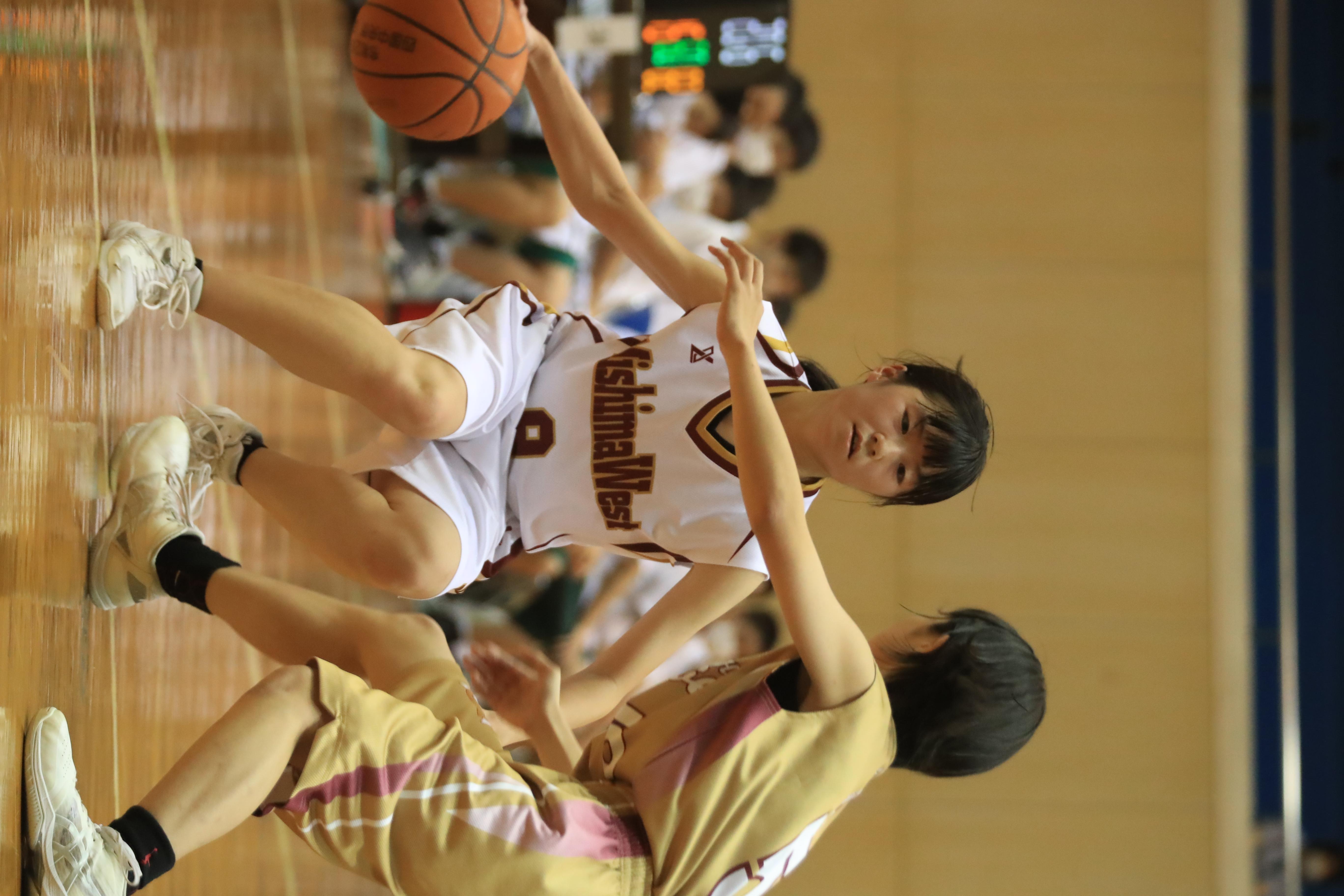 バスケット (1056)