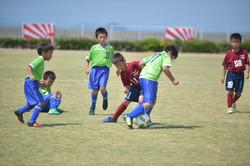 mini_soccer (436)
