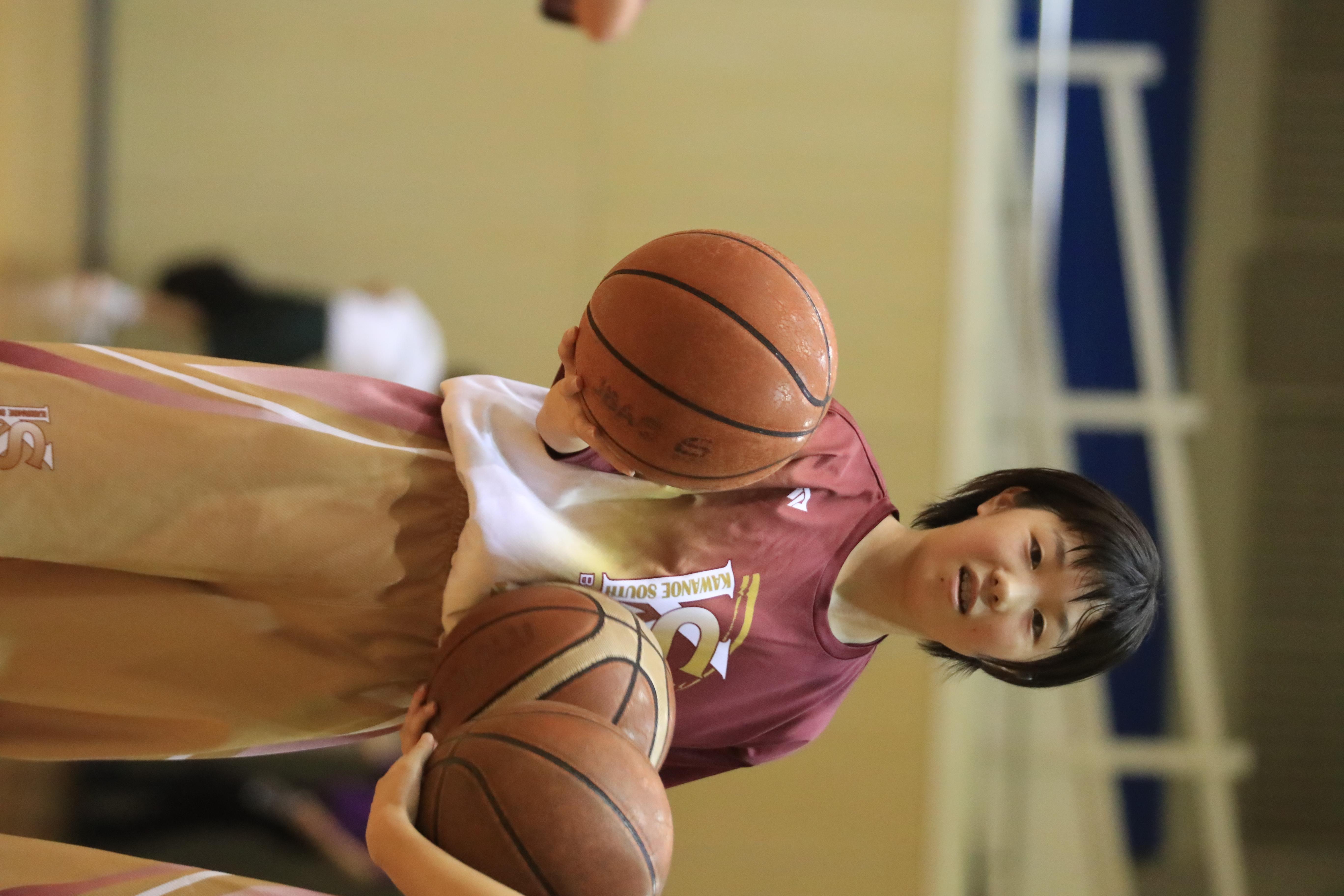バスケット (342)