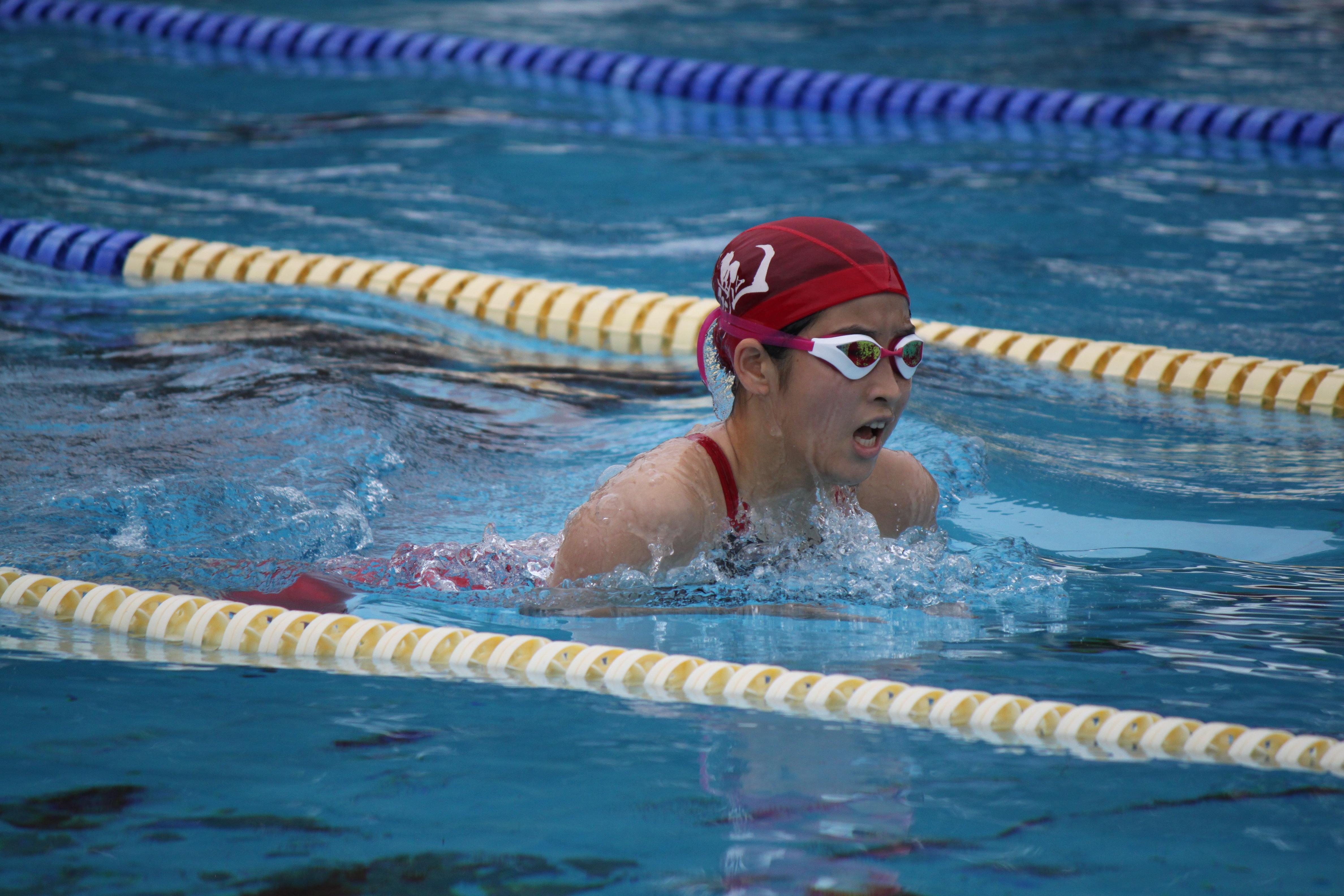 水泳競技 (39)