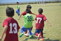 mini_soccer (450)