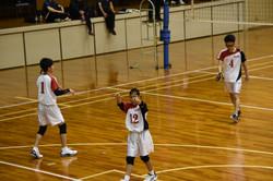 バレーボール (377)