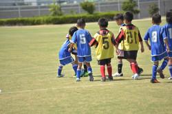 mini_soccer (637)