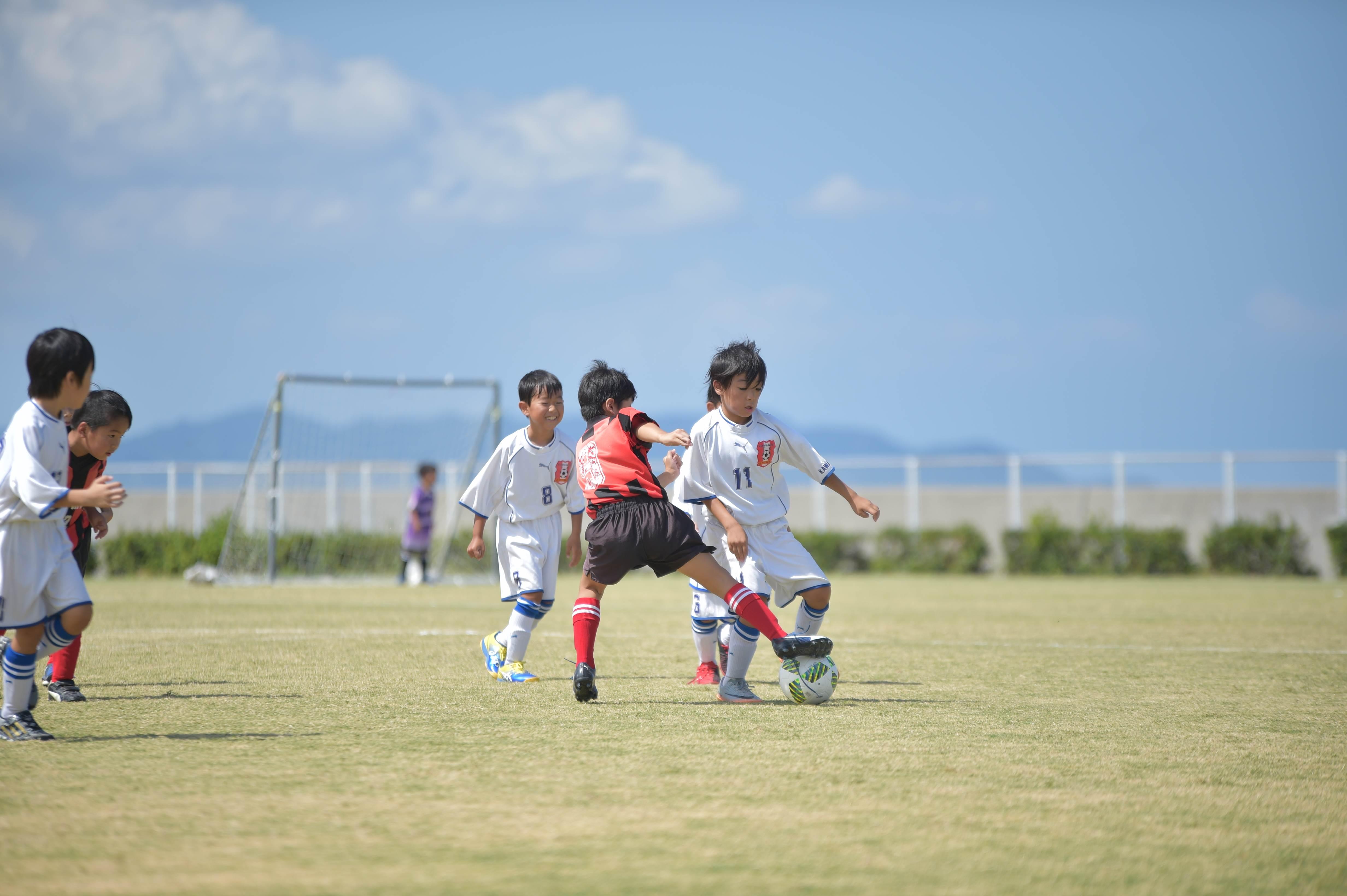 mini_soccer (379)