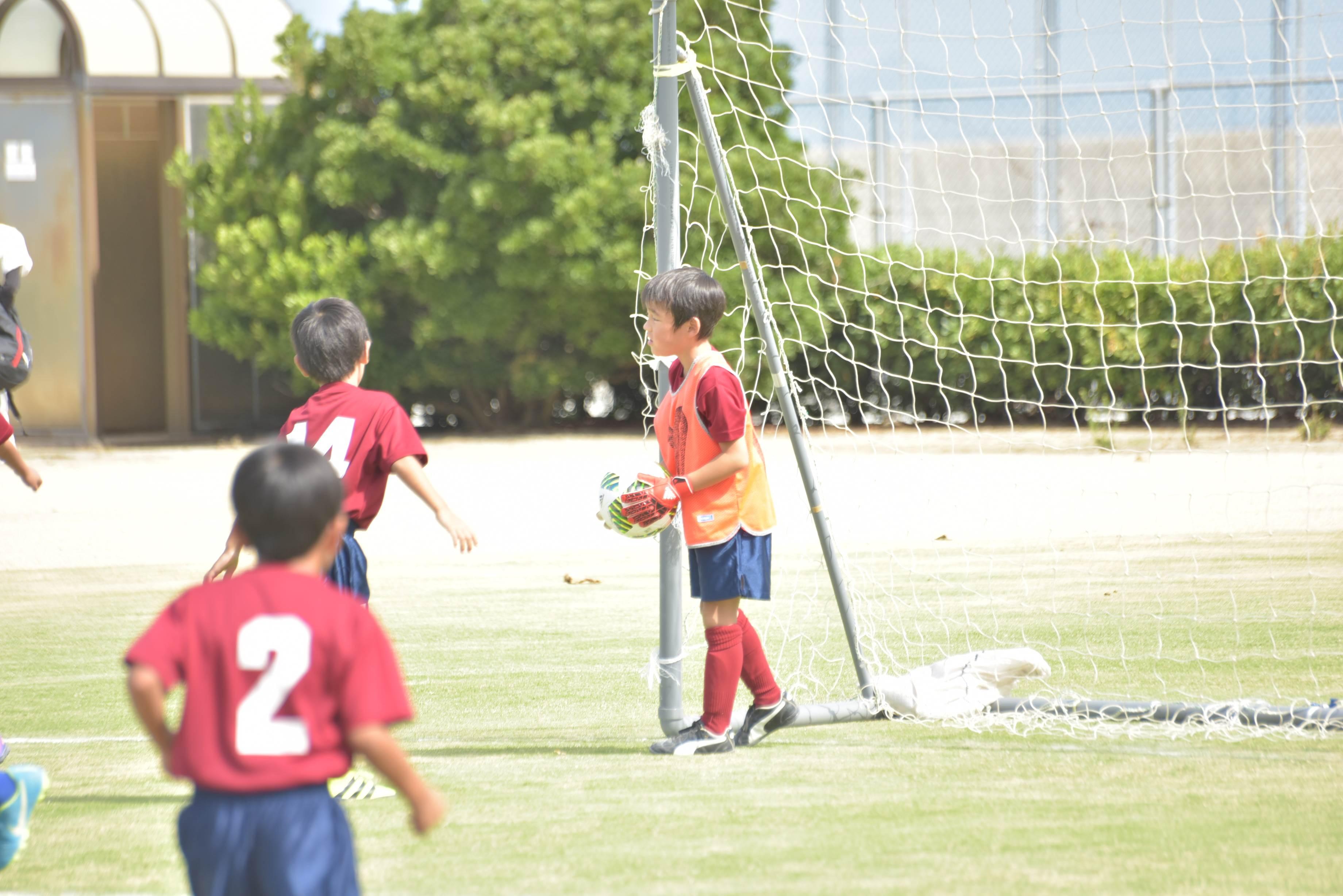 mini_soccer (549)