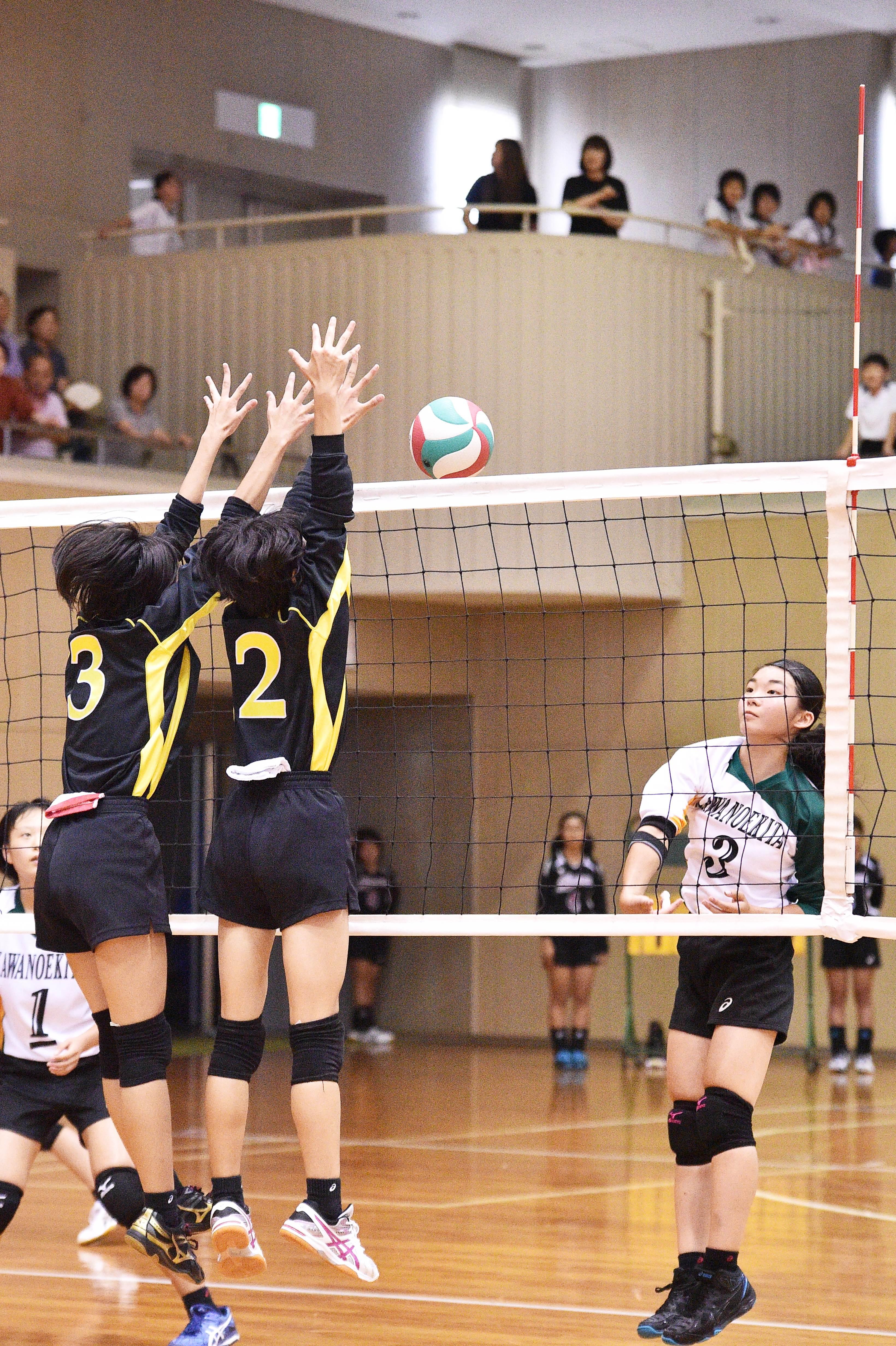 volleyball (39)