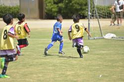 mini_soccer (612)