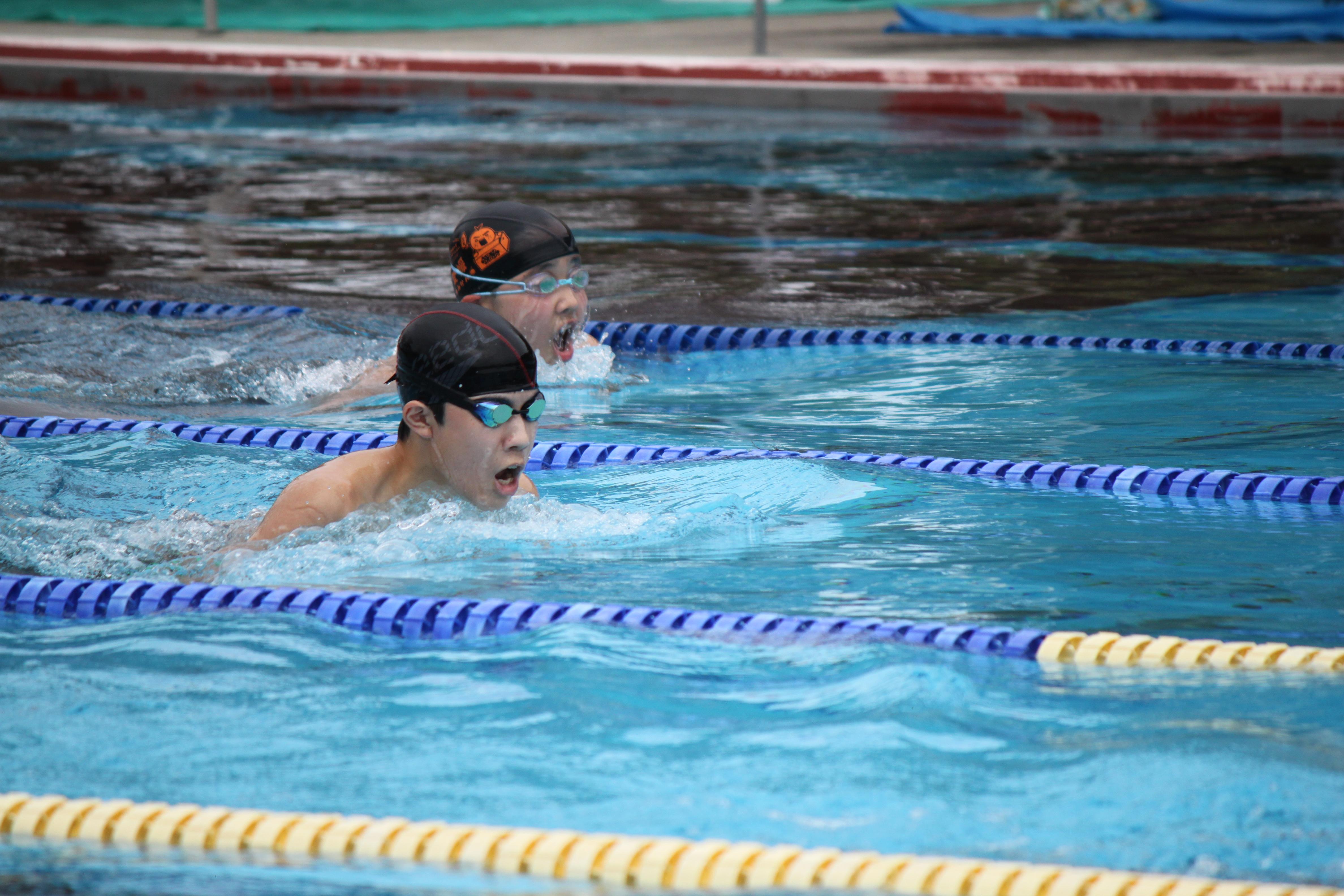 水泳競技 (56)