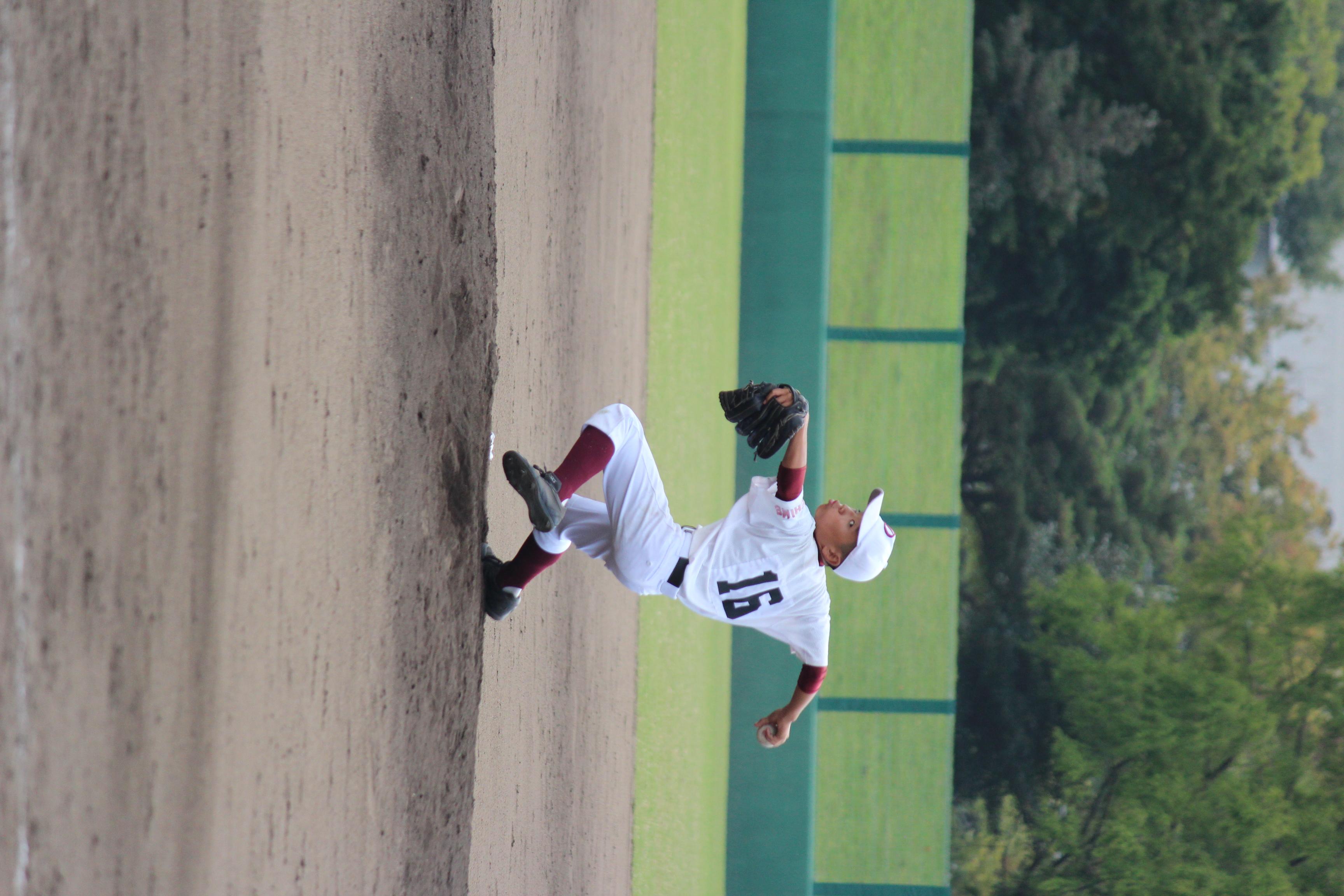 野球 (884)