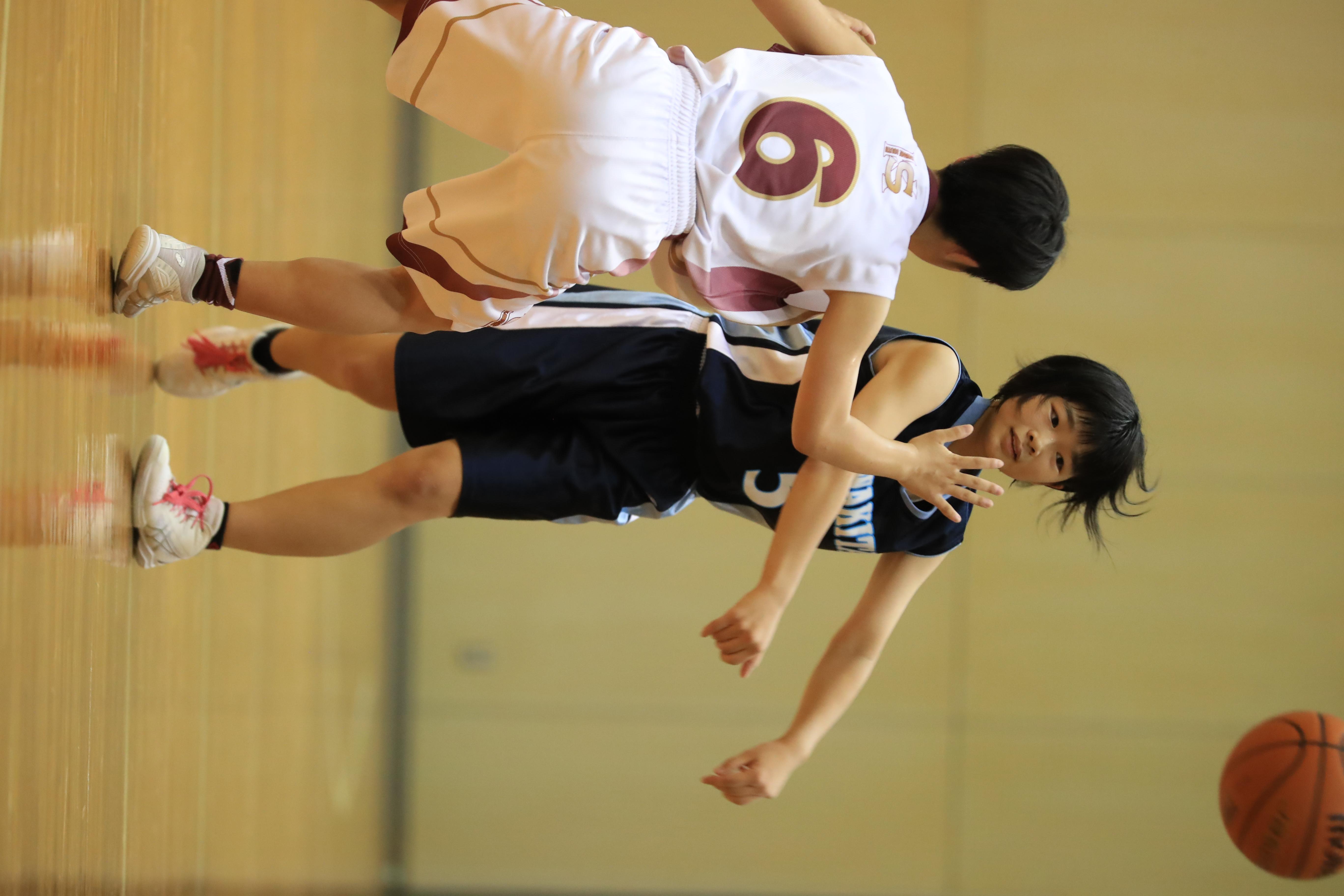 バスケット (110)
