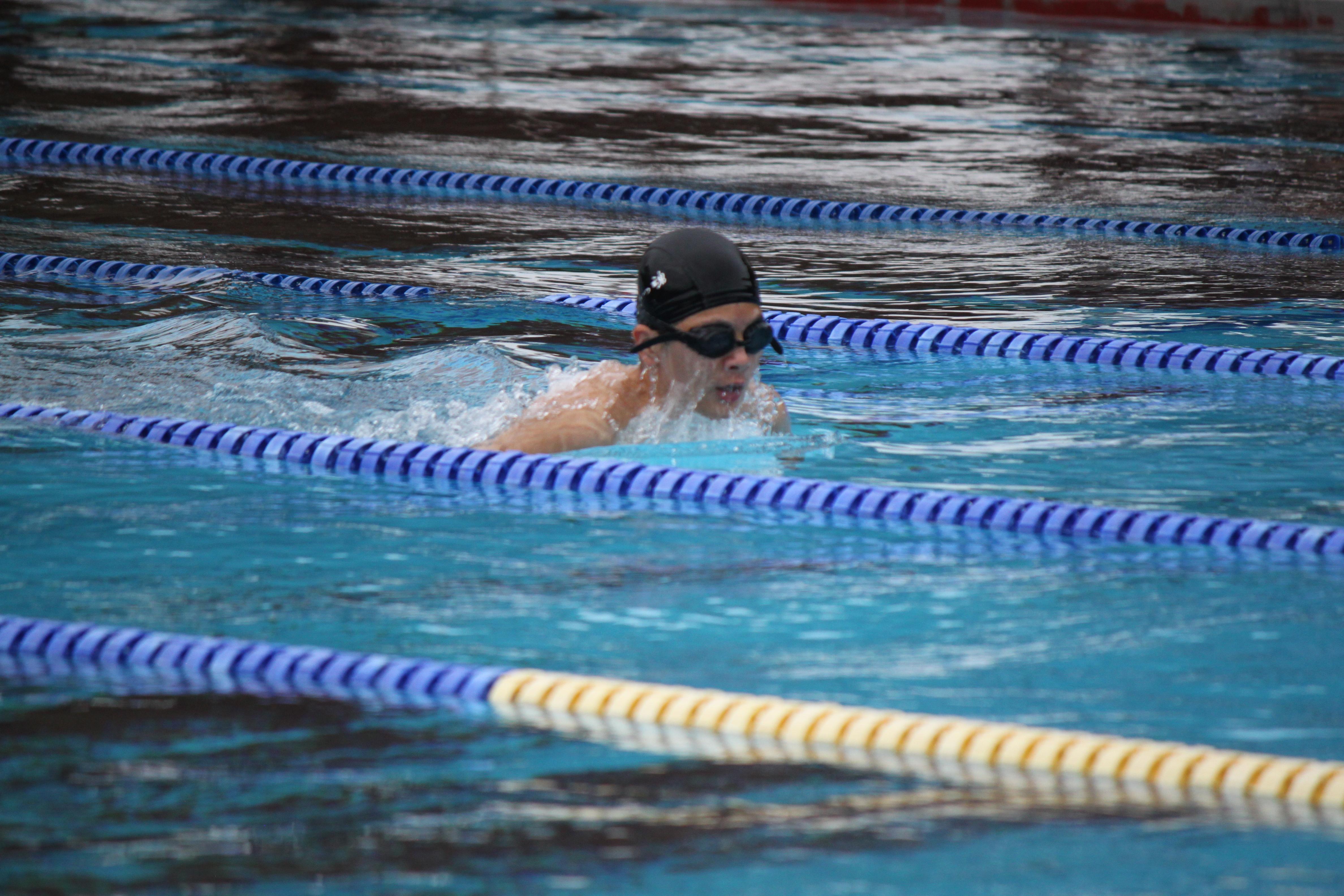 水泳競技 (37)