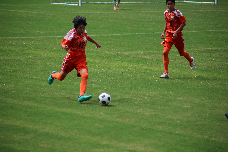 サッカー (447)