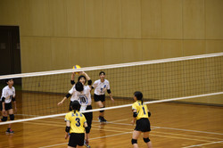 バレーボール (111)