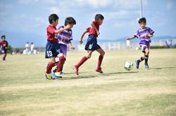 mini_soccer (289)