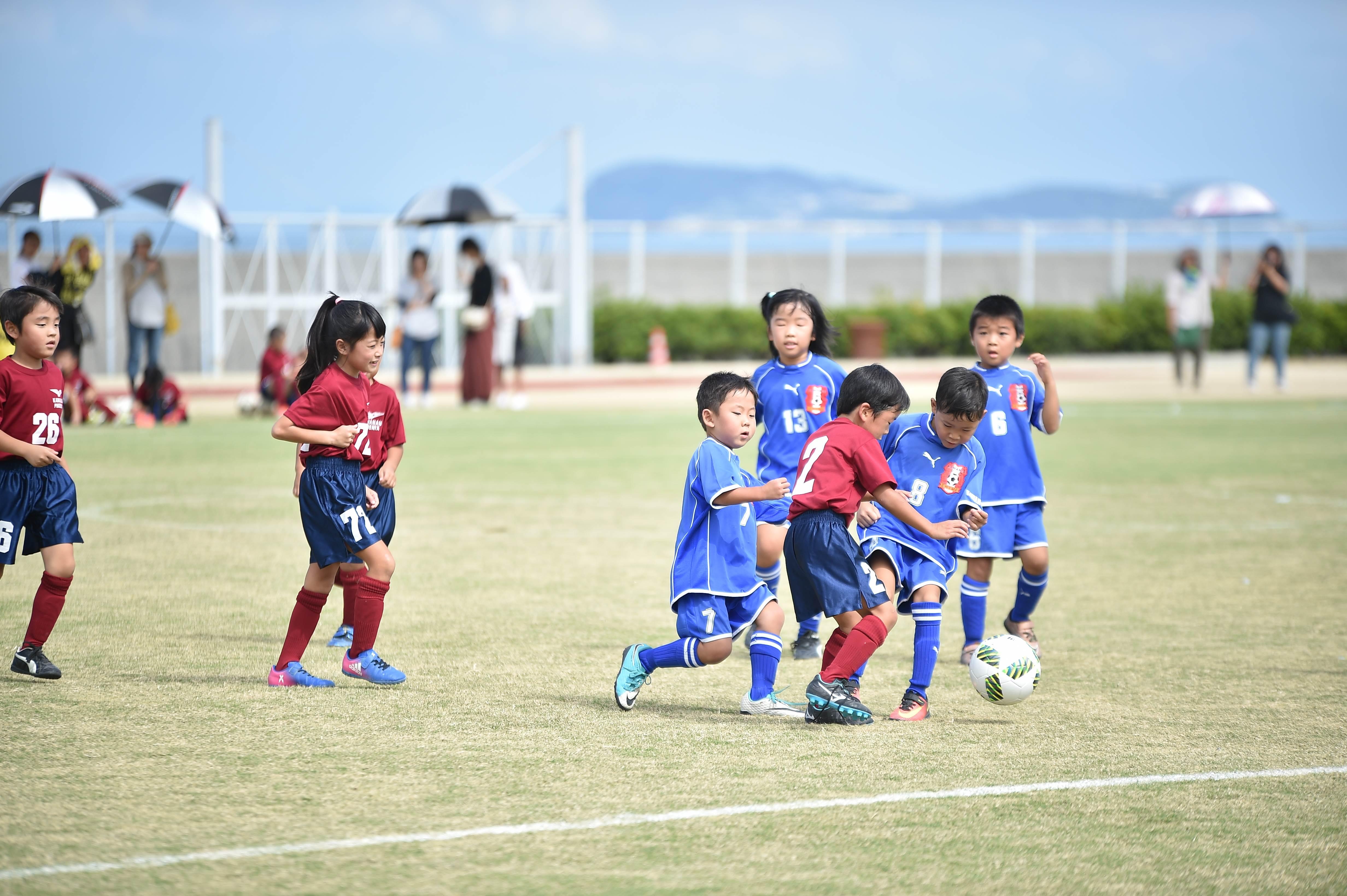 mini_soccer (211)