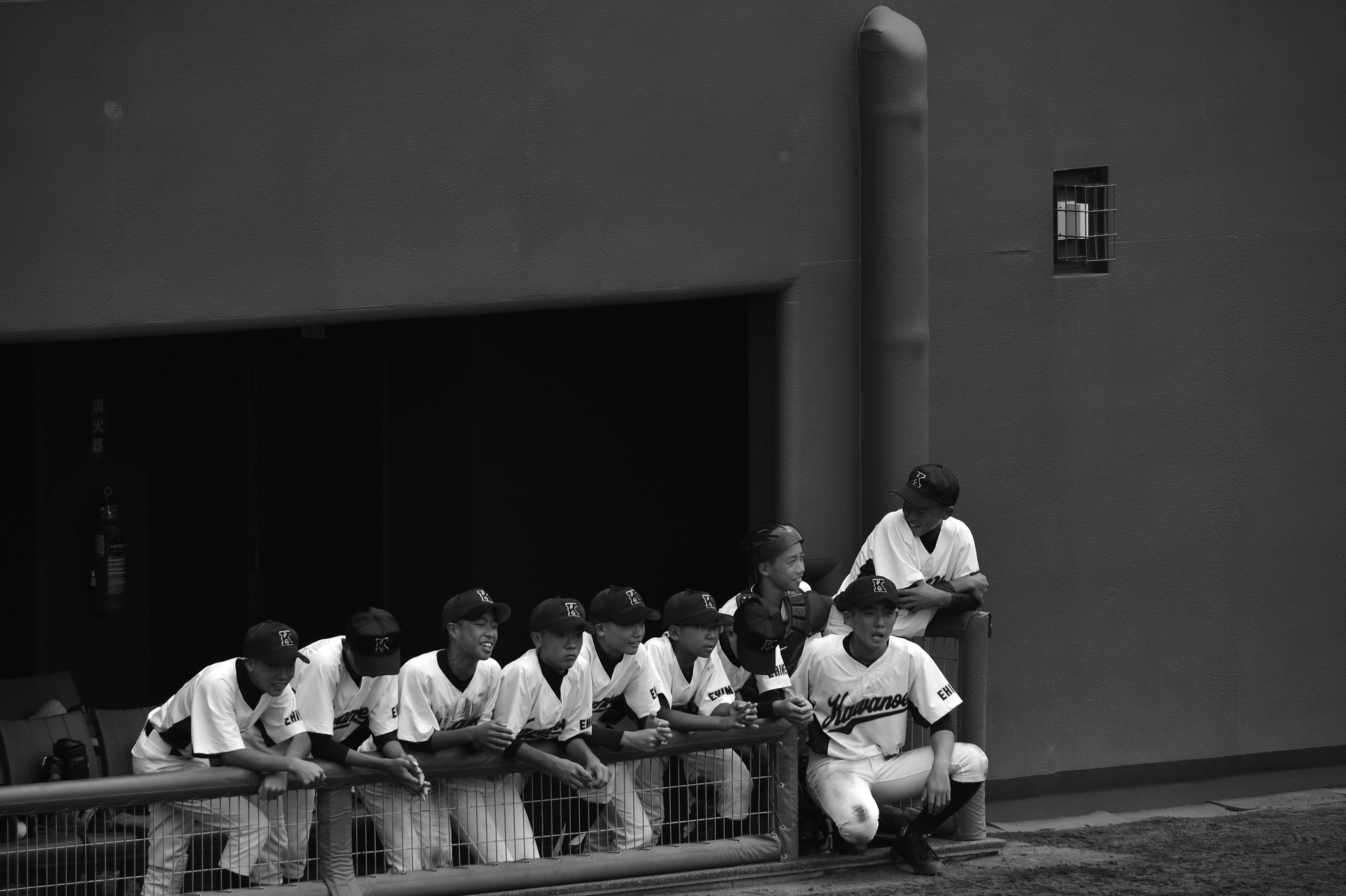 軟式野球 (317)