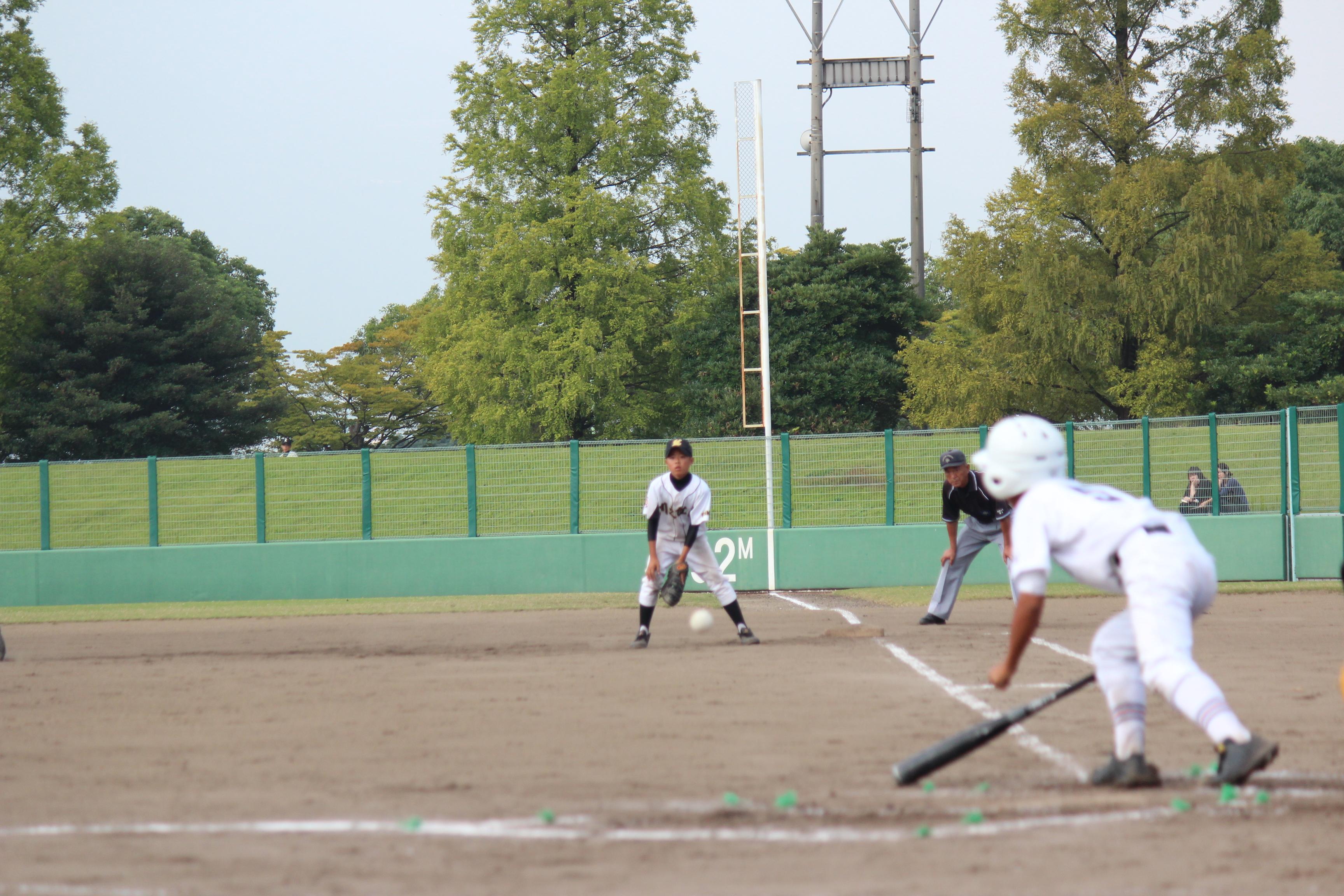 野球 (383)