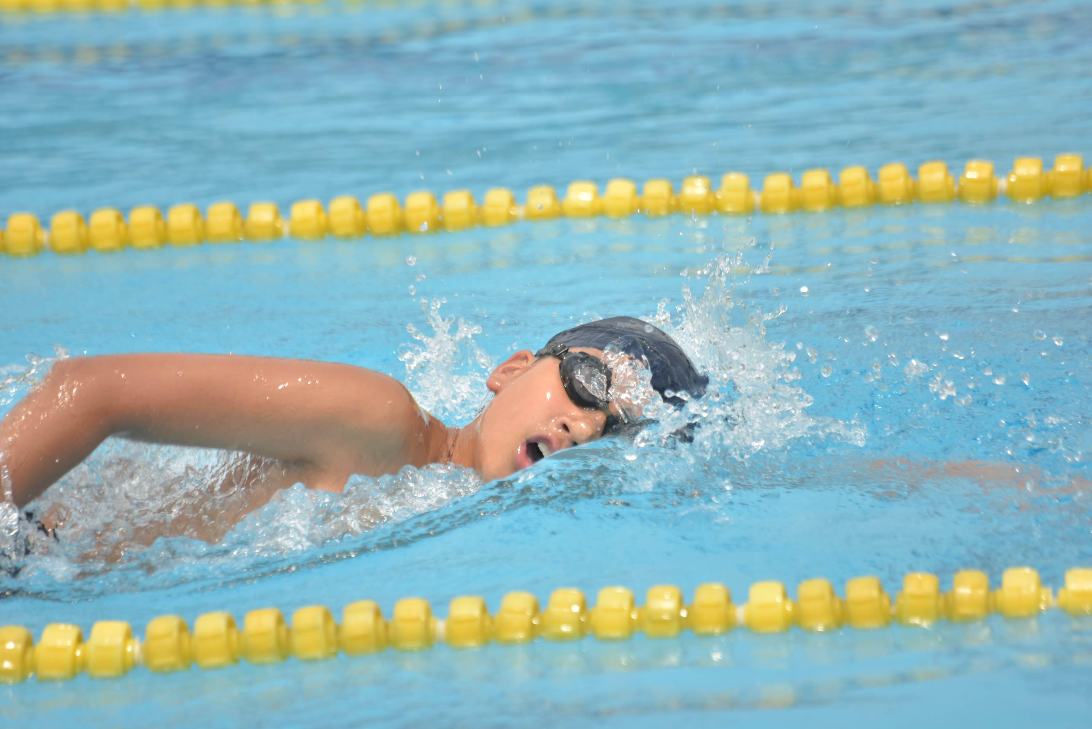 水泳 (1)