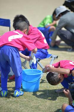 mini_soccer (446)