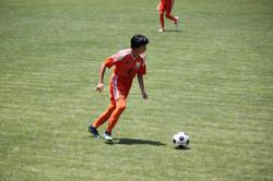 サッカー (791)