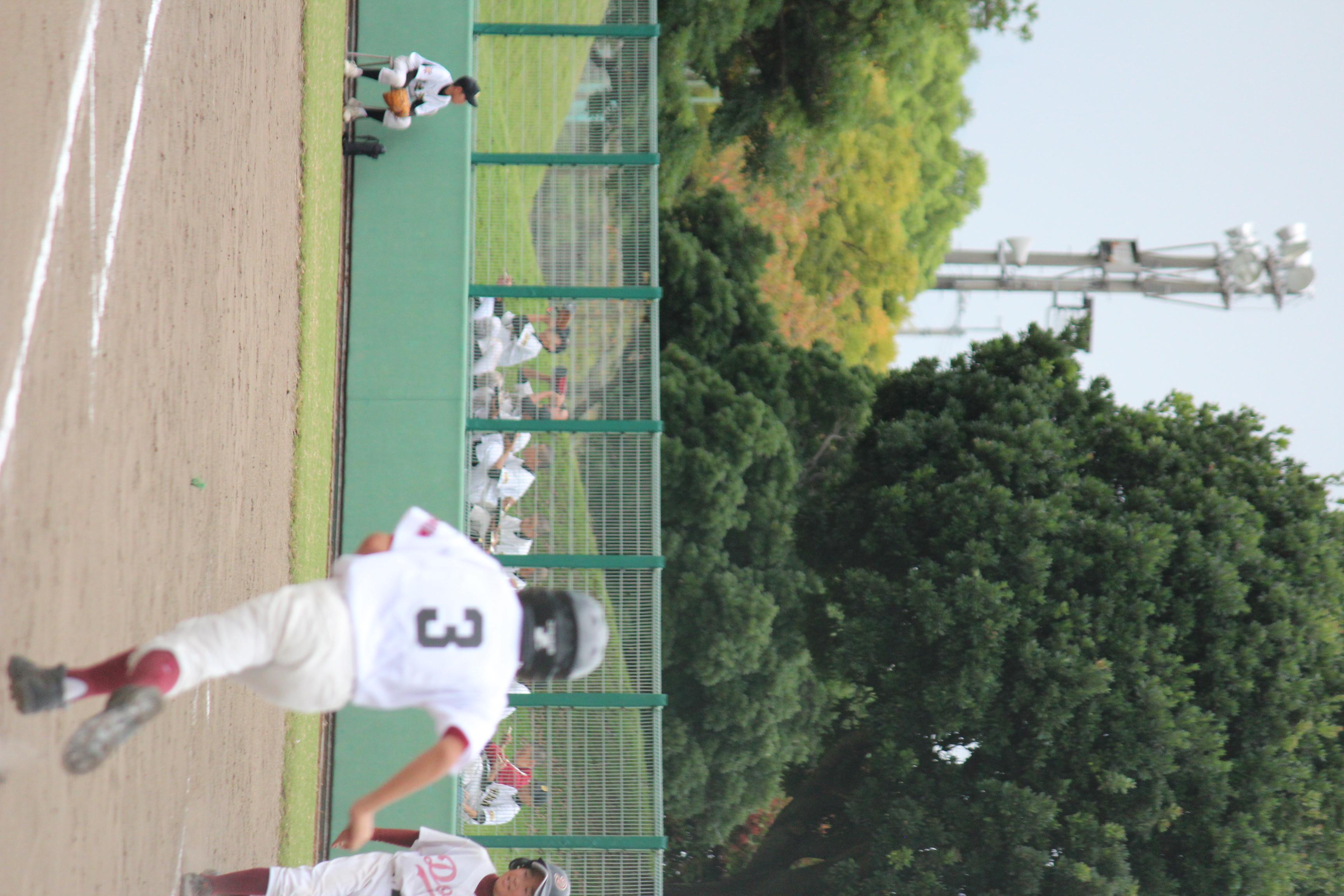 野球 (266)