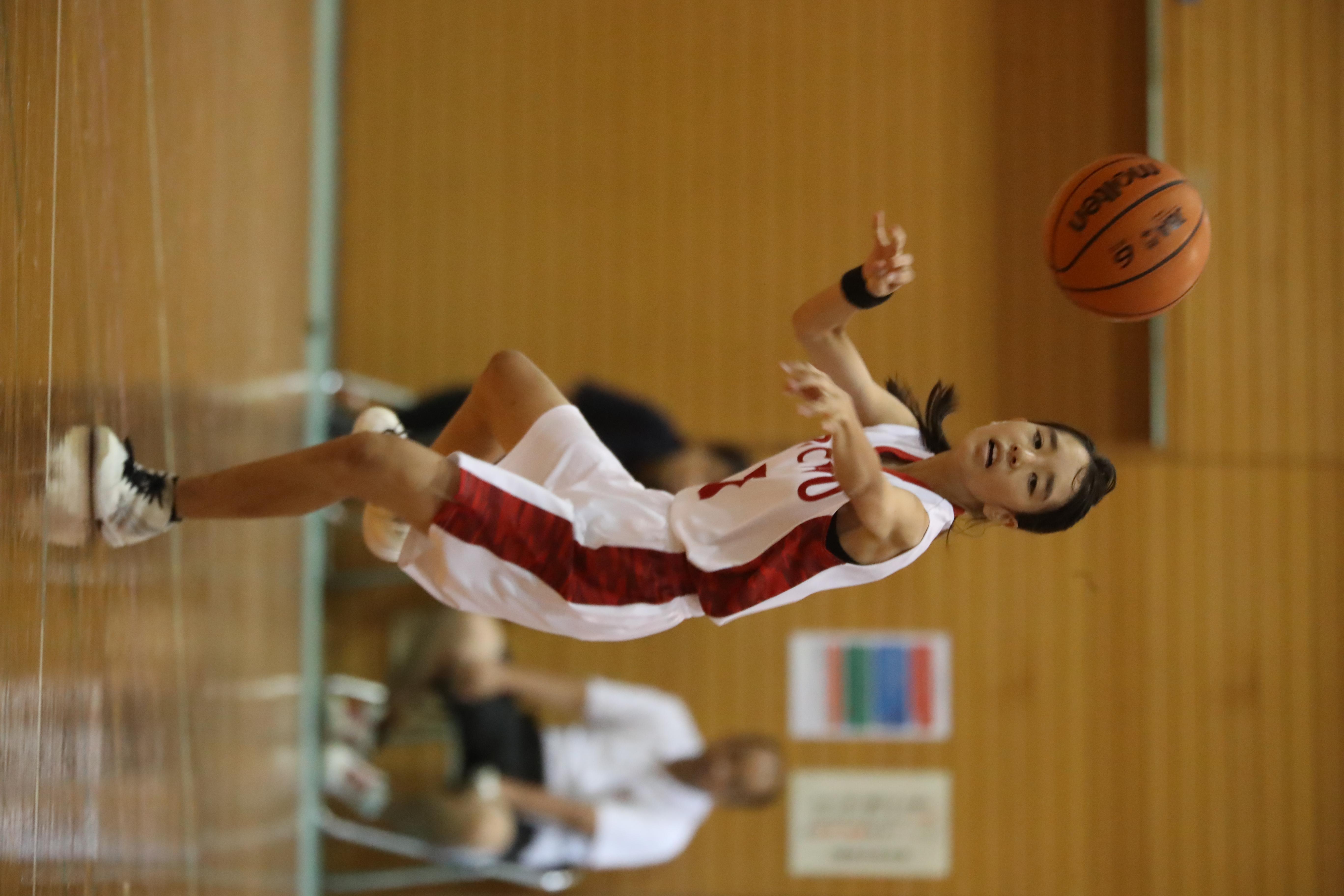 バスケット (461)