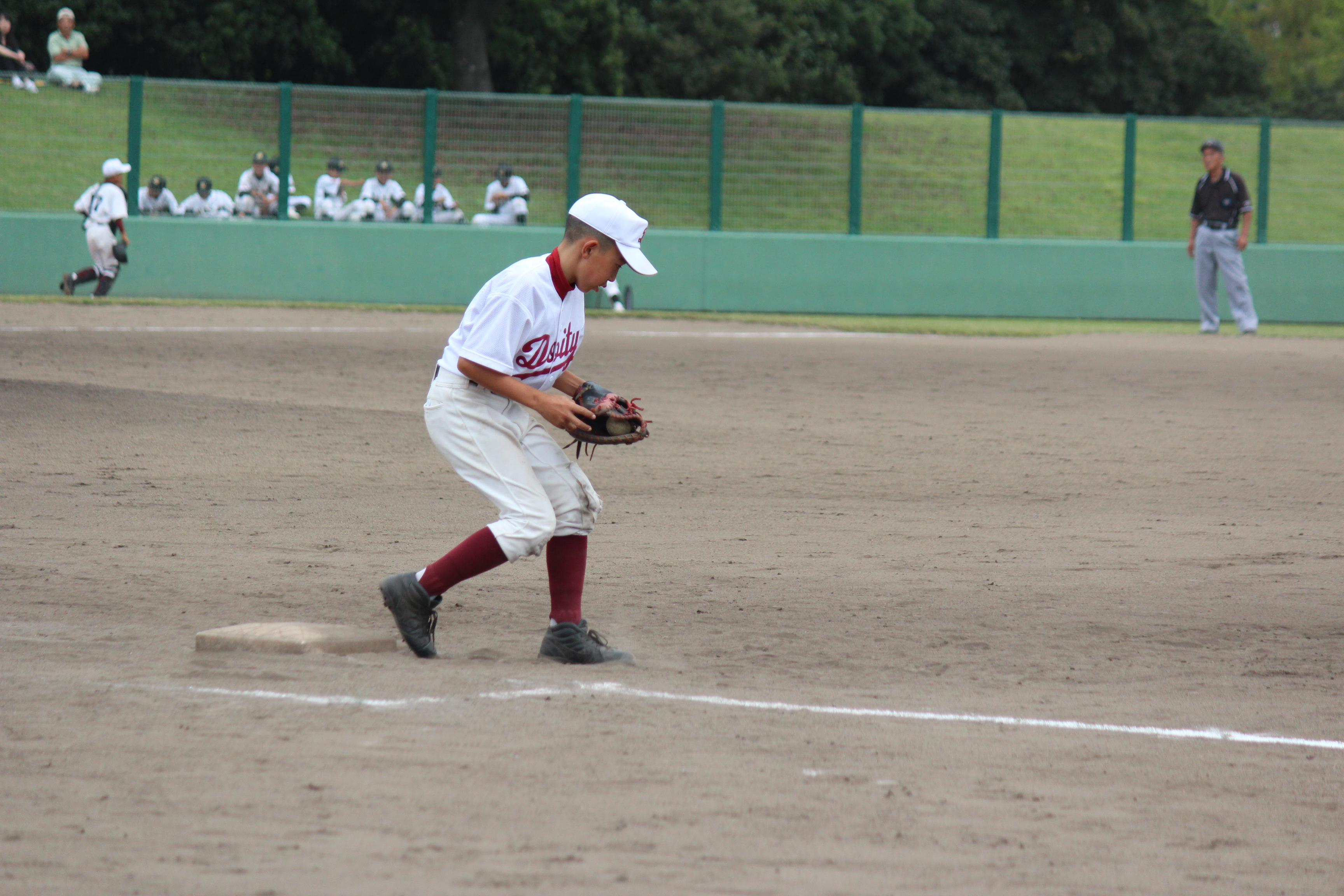 野球 (300)