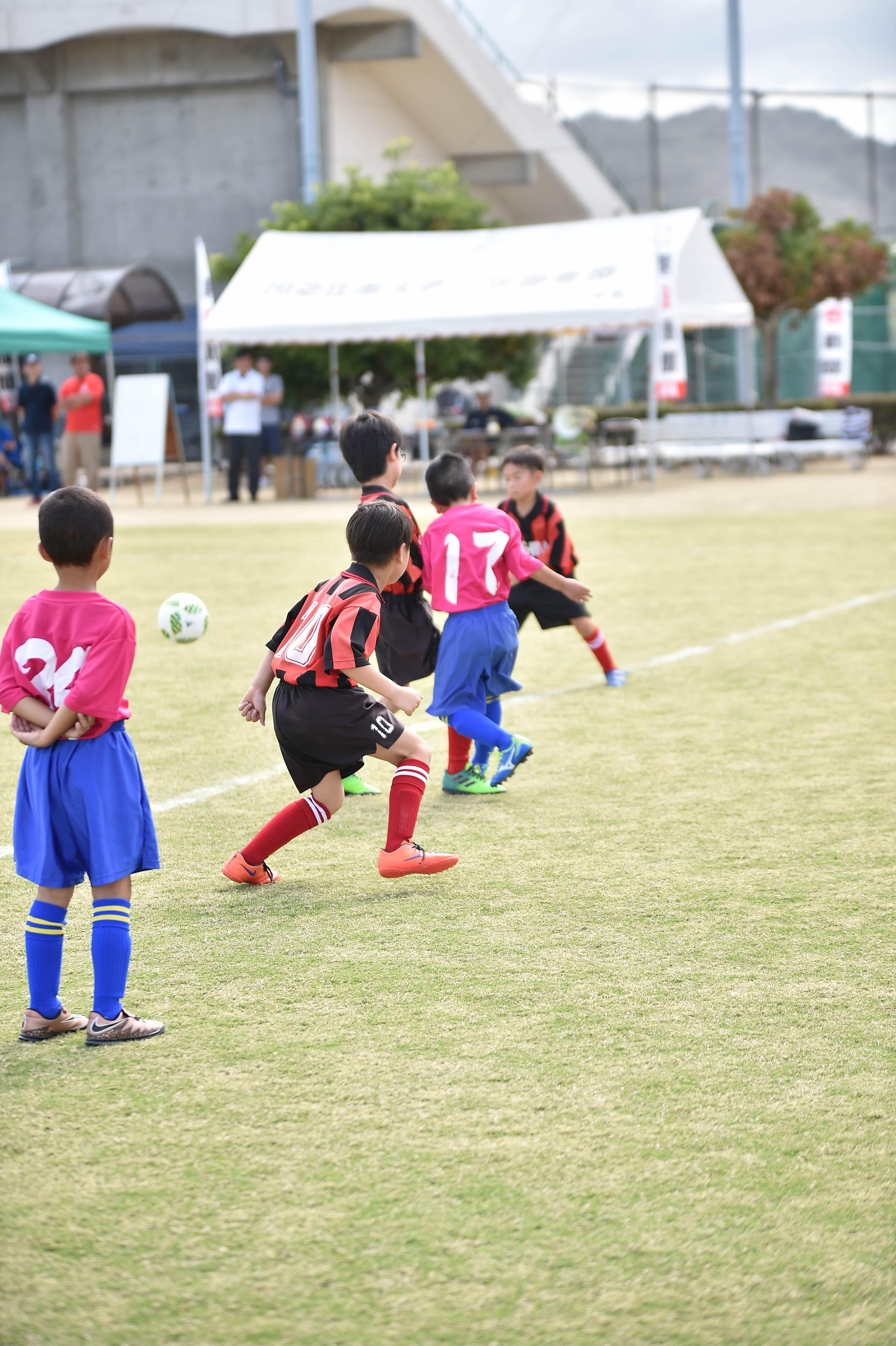 mini_soccer (166)