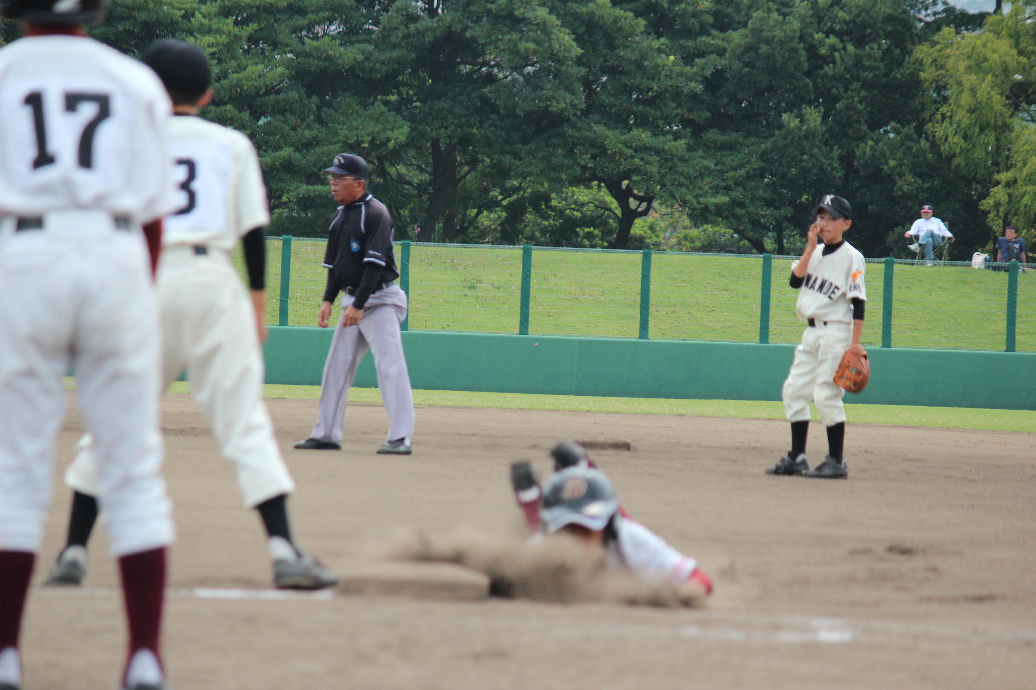 野球 (565)
