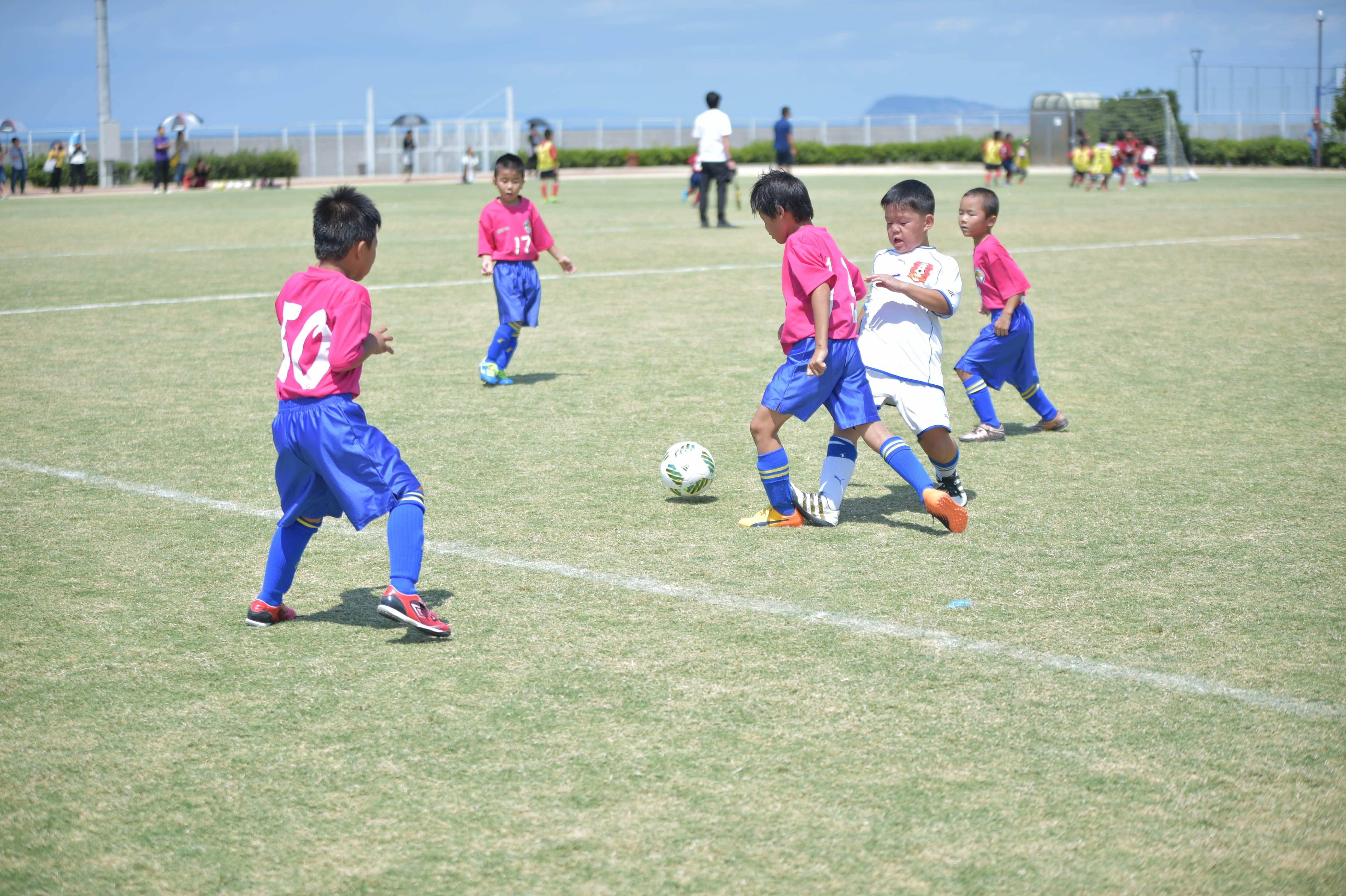 mini_soccer (392)