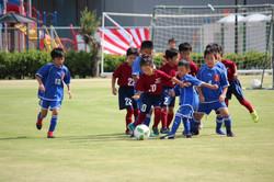 mini_soccer (102)