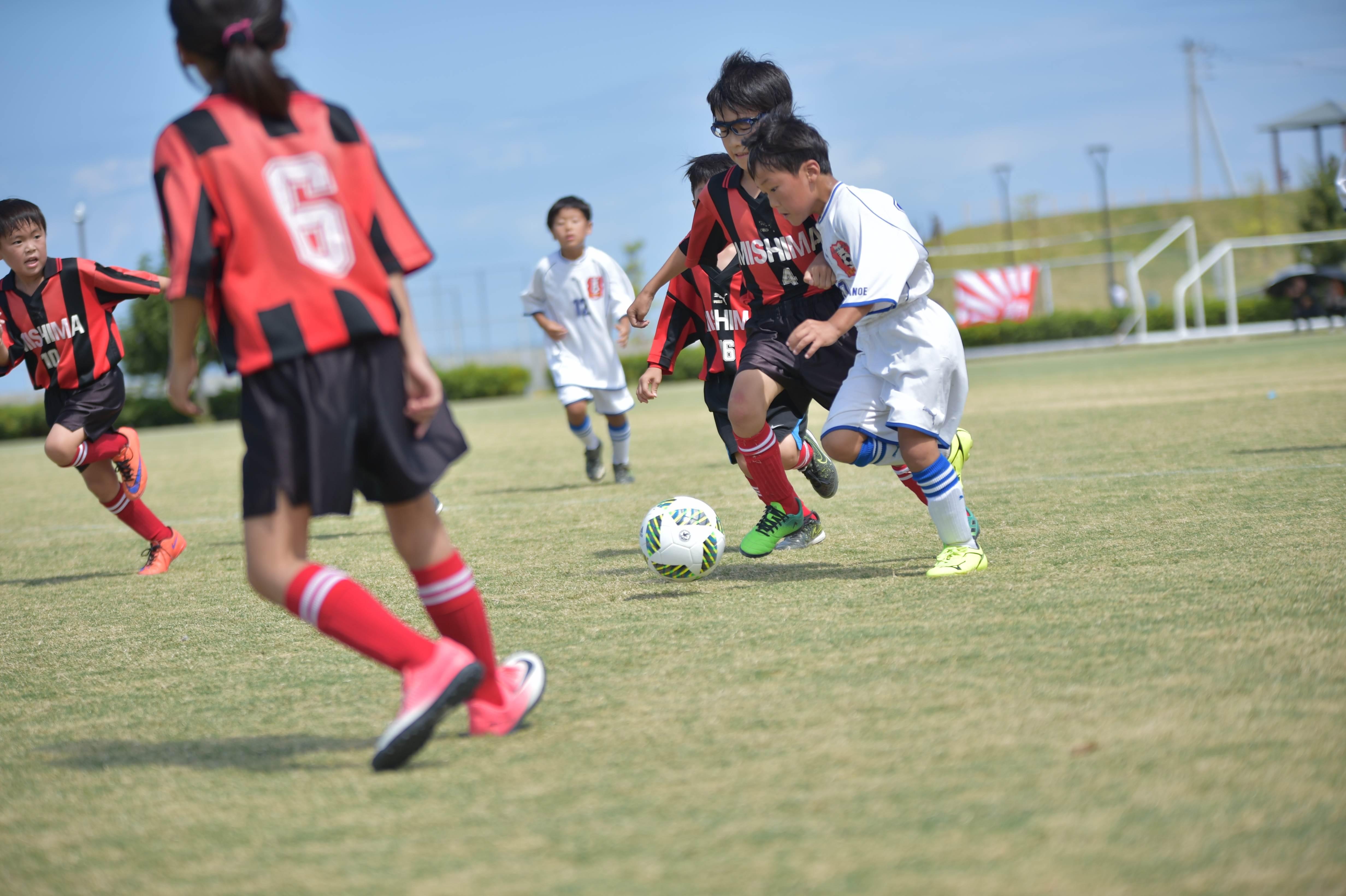 mini_soccer (341)