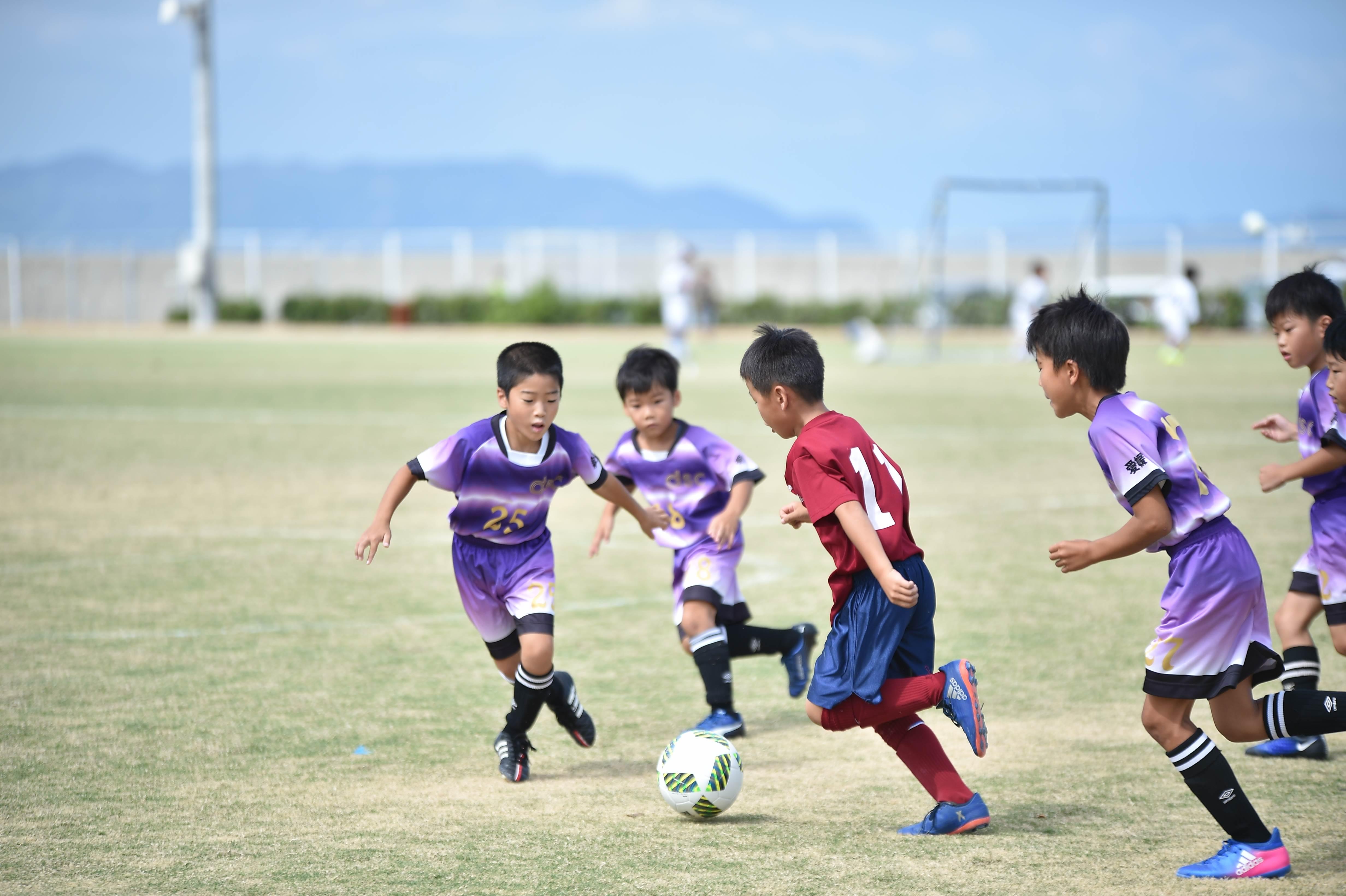 mini_soccer (227)