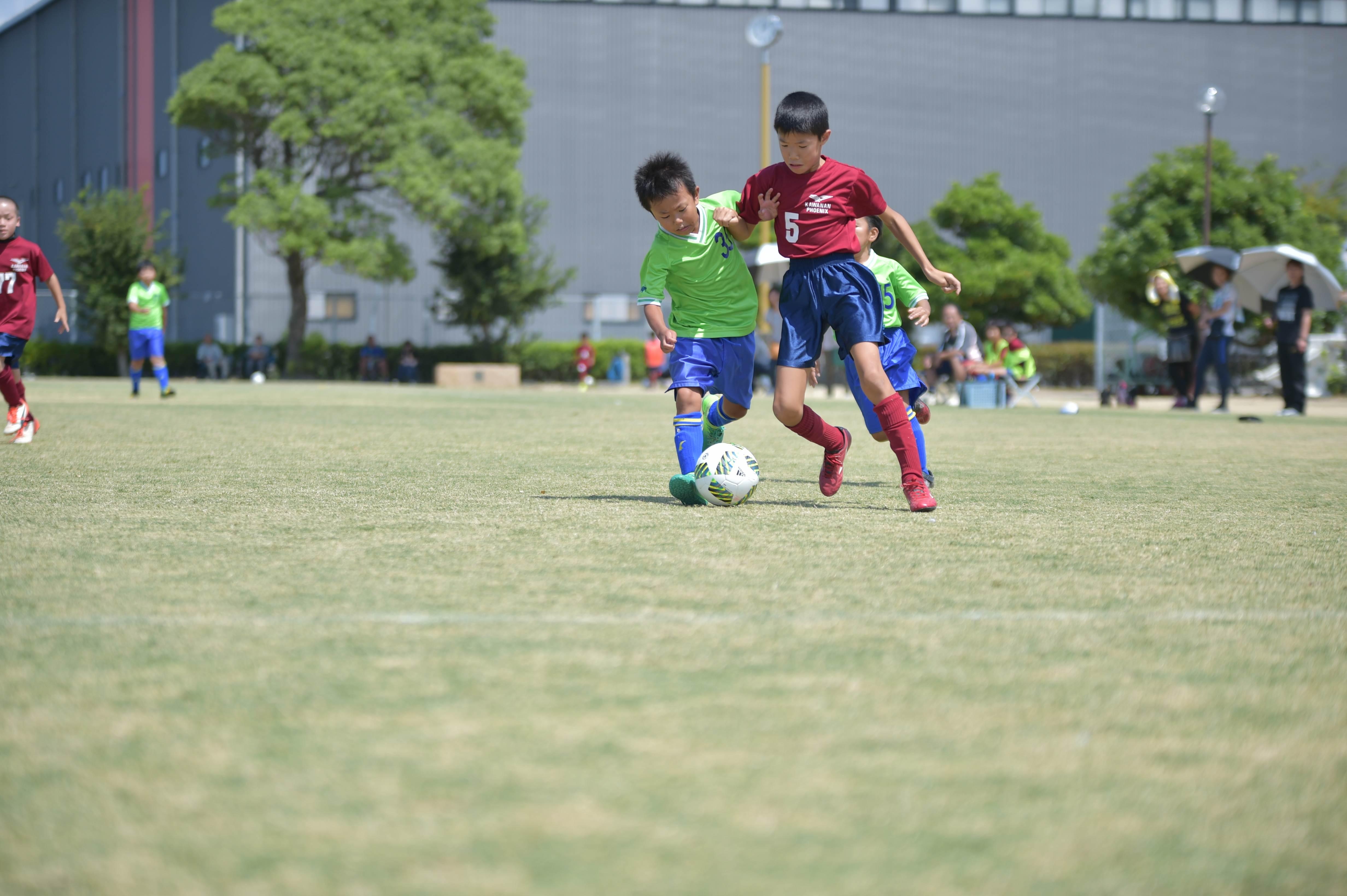 mini_soccer (432)