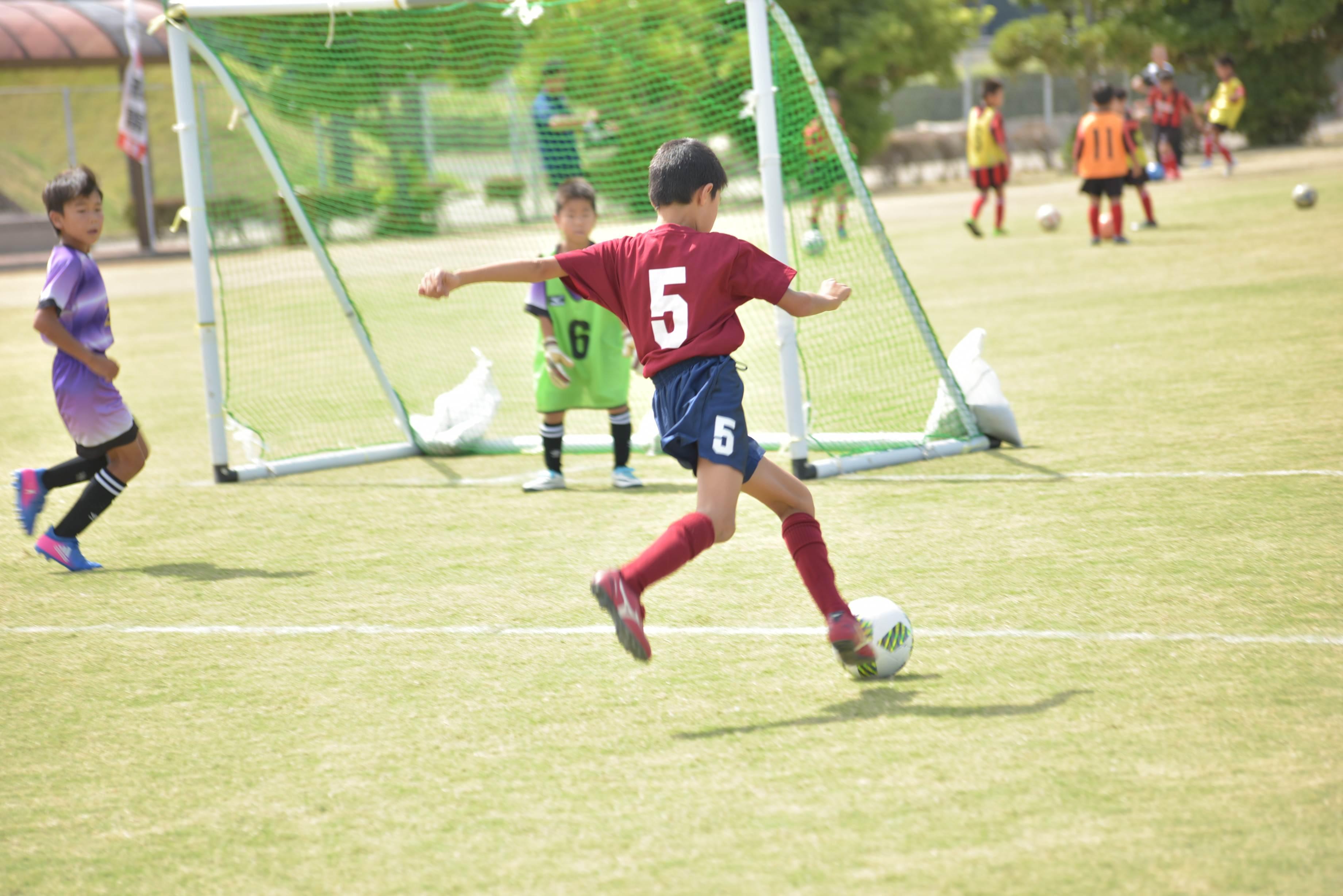 mini_soccer (587)